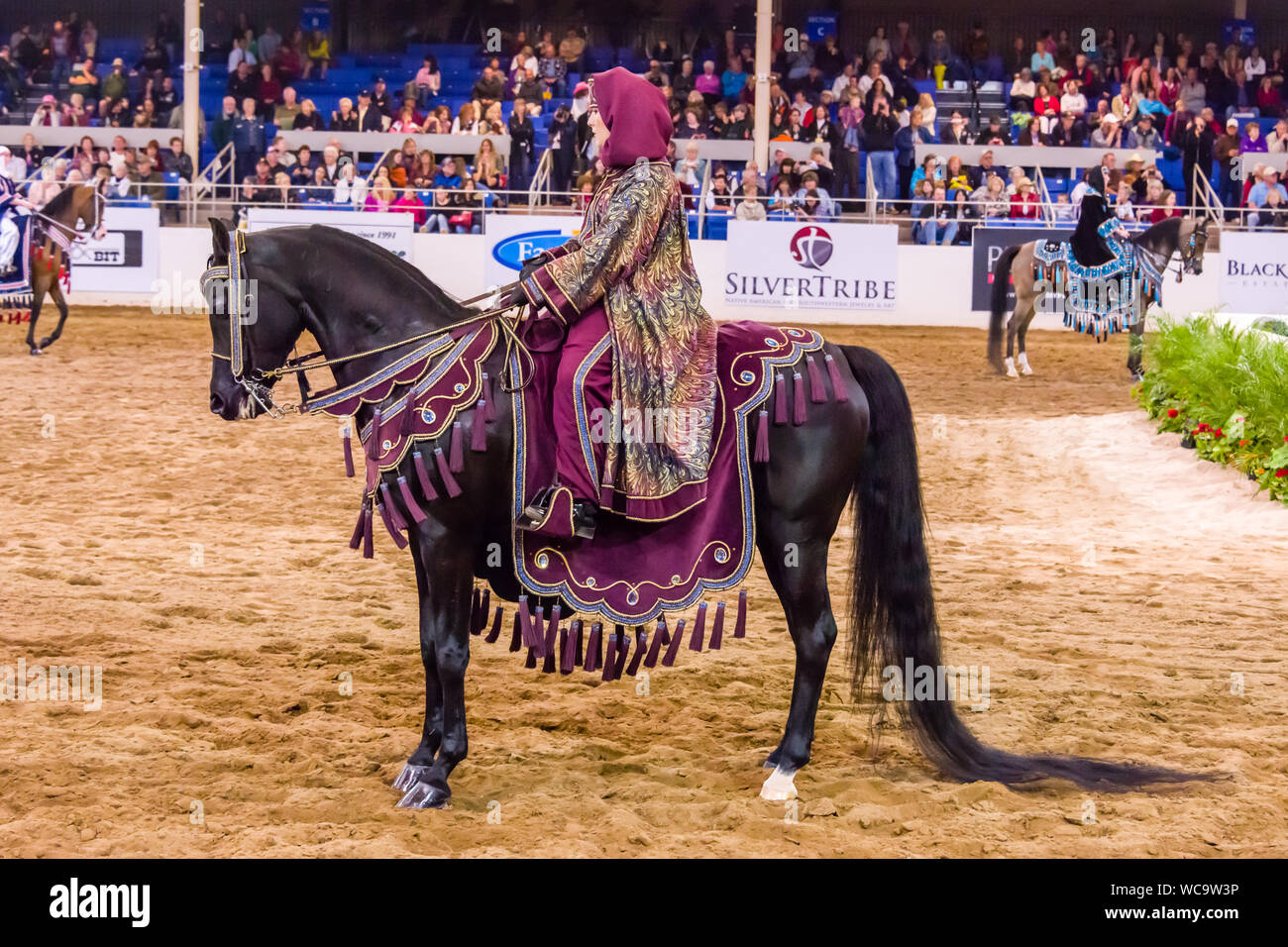 Scottsdale Arabian Horse Show Arabian Costume Stock Photo Alamy