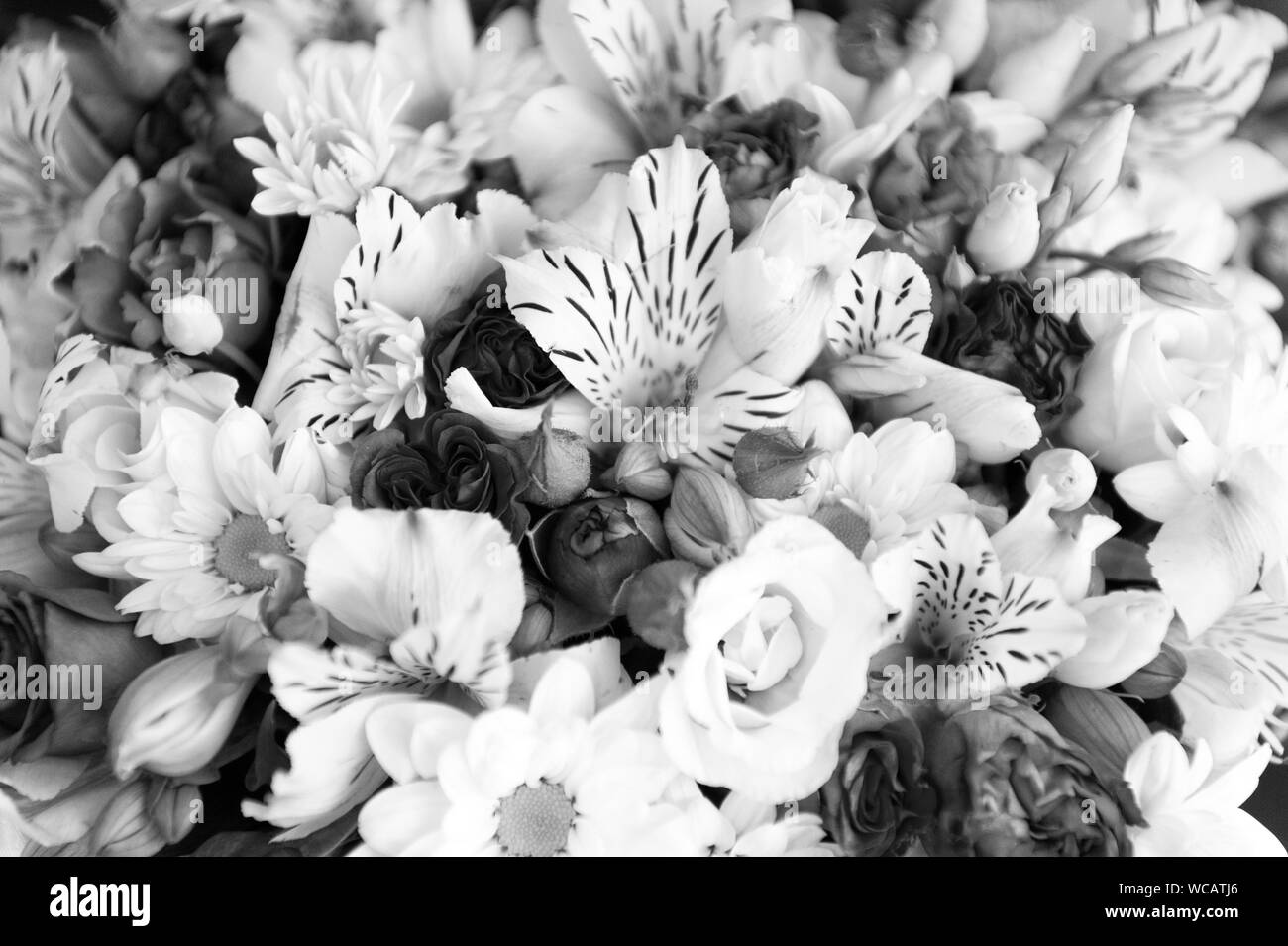 Fresh natural flowers bouquet texture. Happy holidays. Flowers delivery service. Floristic service. Flowers decoration. Fragrance of roses ranunculus orchids and chamomile flowers. Botany background. Stock Photo