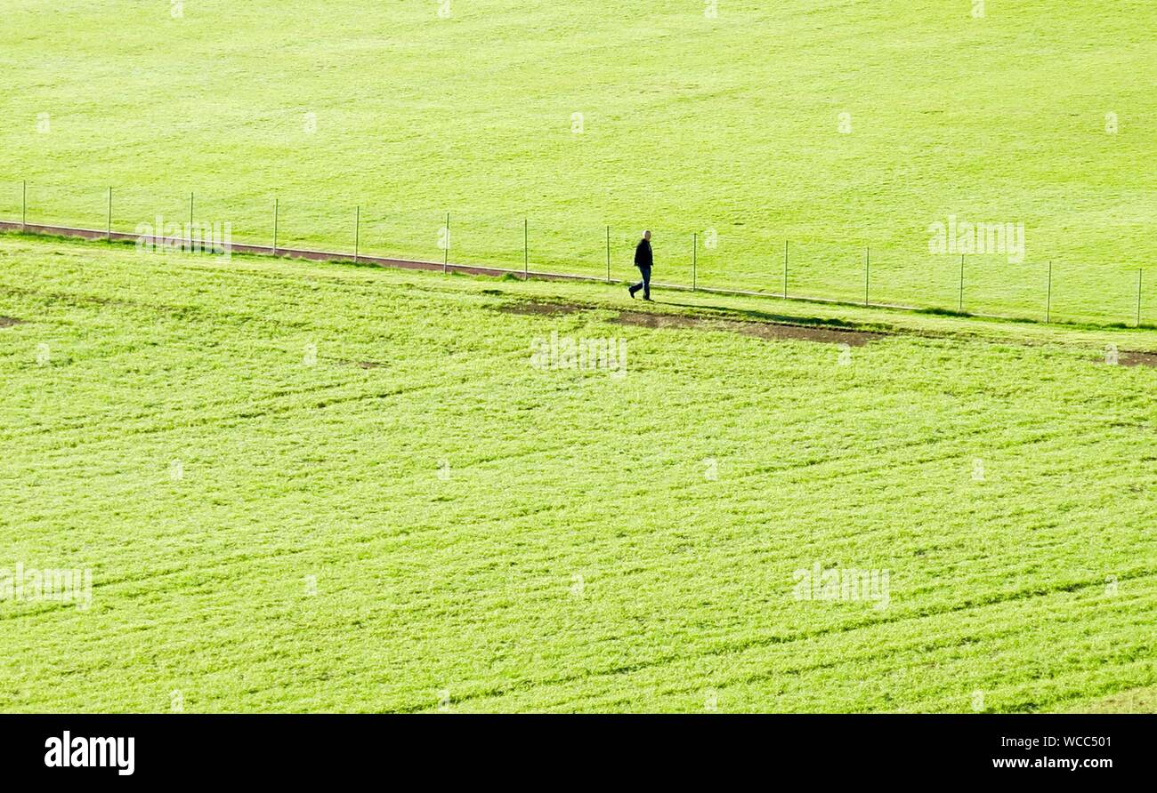 Man Walking Through Field Stock Photo