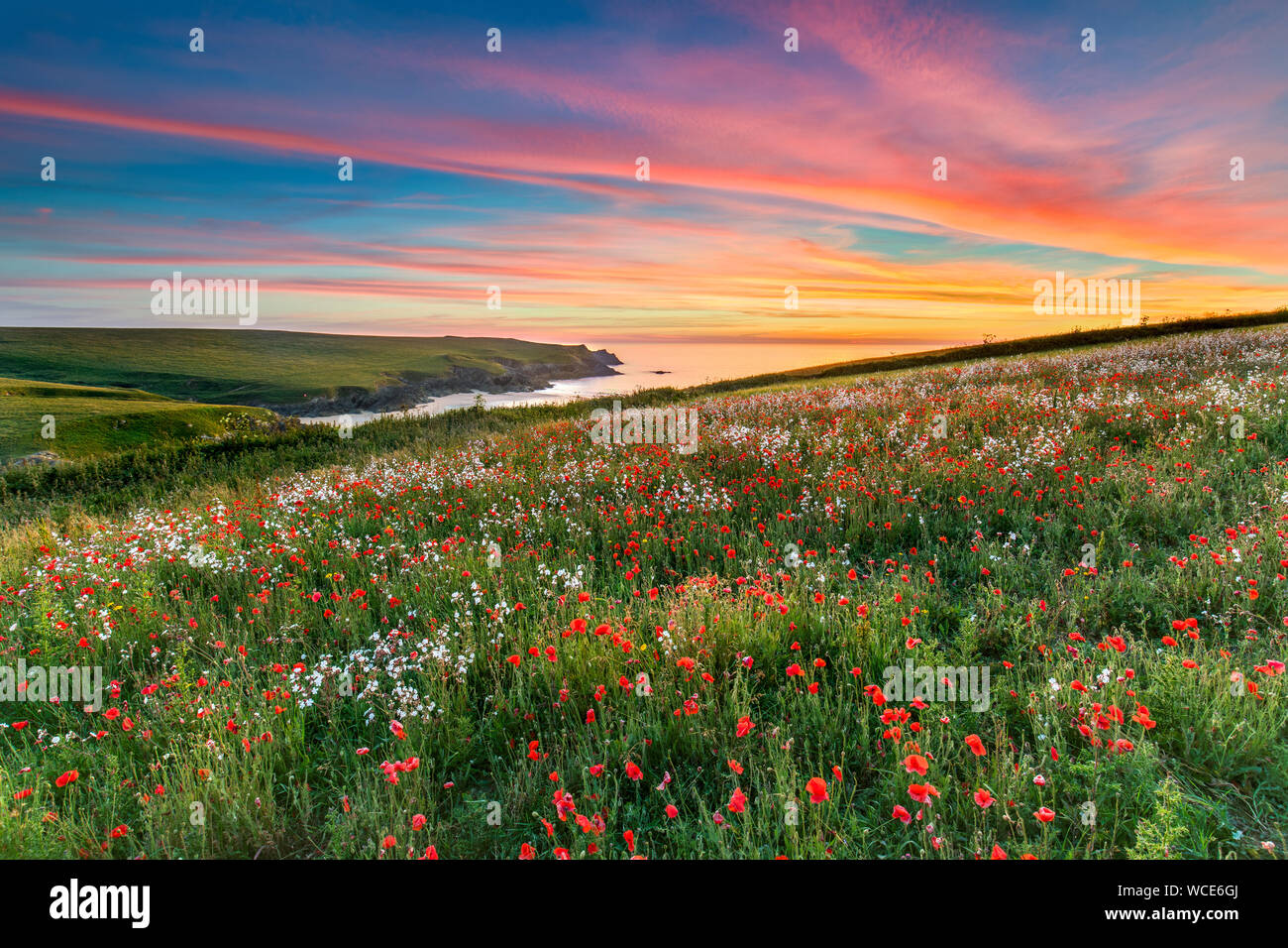 West Pentire; Sunset; Cornwall; UK Stock Photo