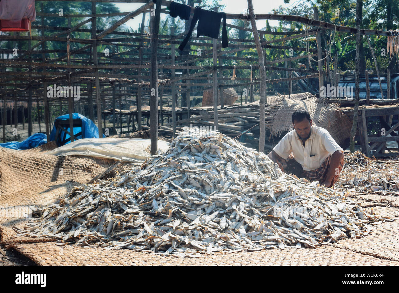 Bangladesh. 27th Aug, 2019. Dry fish industry of Bangladesh is an emerging one and it is providing a huge positive impact to the financial zone of this country. (Photo by Rajiul Huda Dipto/Pacific Press) Credit: Pacific Press Agency/Alamy Live News Stock Photo