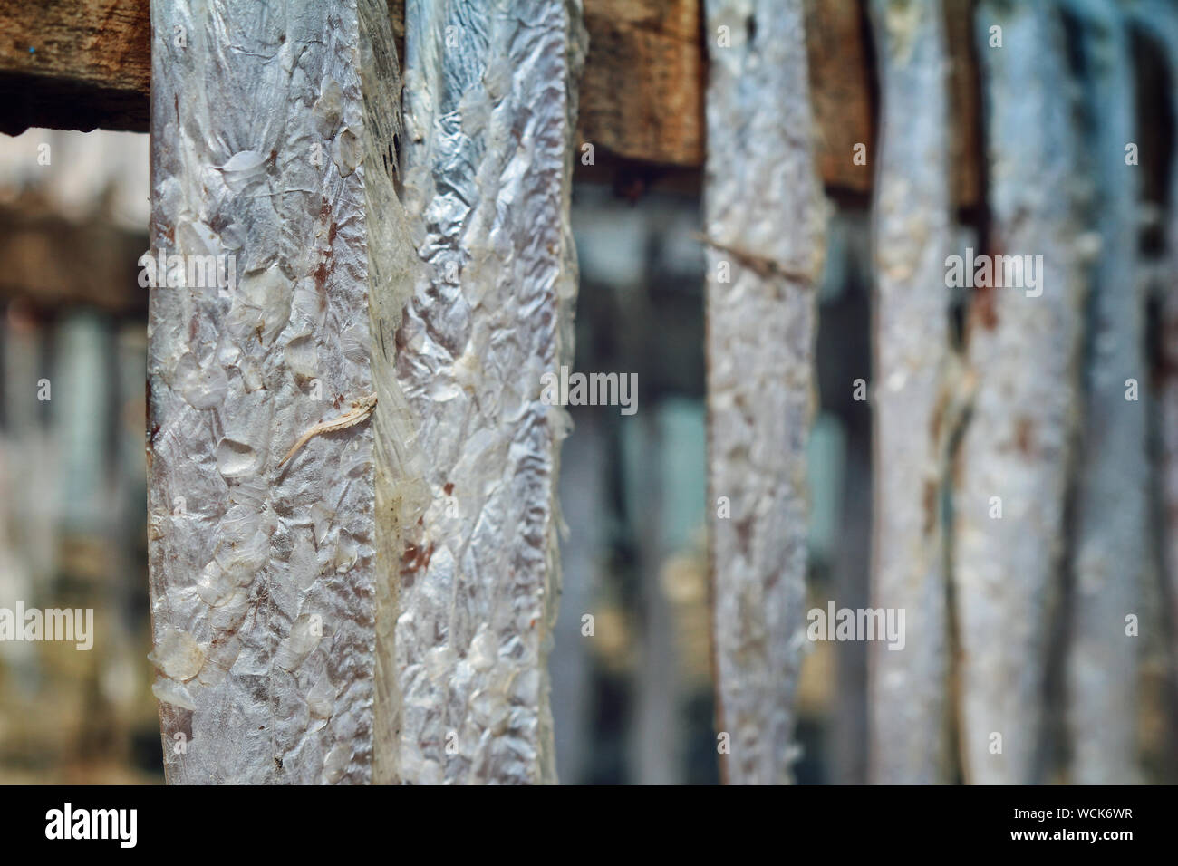 Bangladesh. 07th Jan, 2019. Dry fish industry of Bangladesh is an emerging one and it is providing a huge positive impact to the financial zone of this country. (Photo by Rajiul Huda Dipto/Pacific Press) Credit: Pacific Press Agency/Alamy Live News Stock Photo