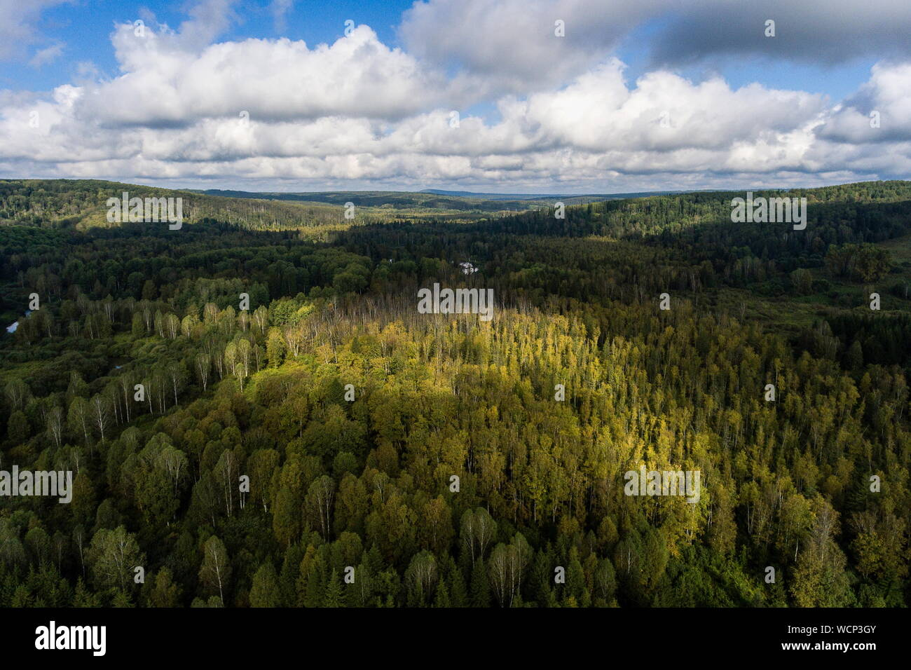Russia. 28th Aug, 2019. ALTAI TERRITORY, RUSSIA - AUGUST 28, 2019: A locality in Togul District of Russia's Altai Territory, which is to become part of a protected area under the working name of Togul National Park; according to the Russian government's project Ekologia (Ecology), the proposed national park is to be established by 2024 and to include parts of Zarinsk District, Togul District, and Yeltsovka District of the Altai Territory, with a total area of over 160 hectares. Kirill Kukhmar/TASS Credit: ITAR-TASS News Agency/Alamy Live News Stock Photo