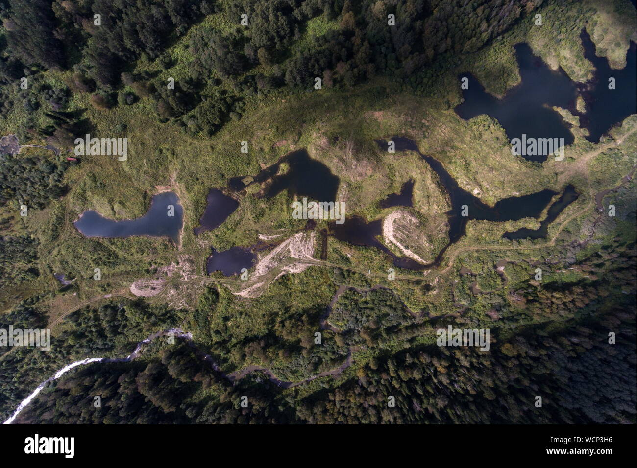 Russia. 28th Aug, 2019. ALTAI TERRITORY, RUSSIA - AUGUST 28, 2019: An aerial image of a locality in Togul District of Russia's Altai Territory, which is to become part of a protected area under the working name of Togul National Park; according to the Russian government's project Ekologia (Ecology), the proposed national park is to be established by 2024 and to include parts of Zarinsk District, Togul District, and Yeltsovka District of the Altai Territory, with a total area of over 160 hectares. Kirill Kukhmar/TASS Credit: ITAR-TASS News Agency/Alamy Live News Stock Photo