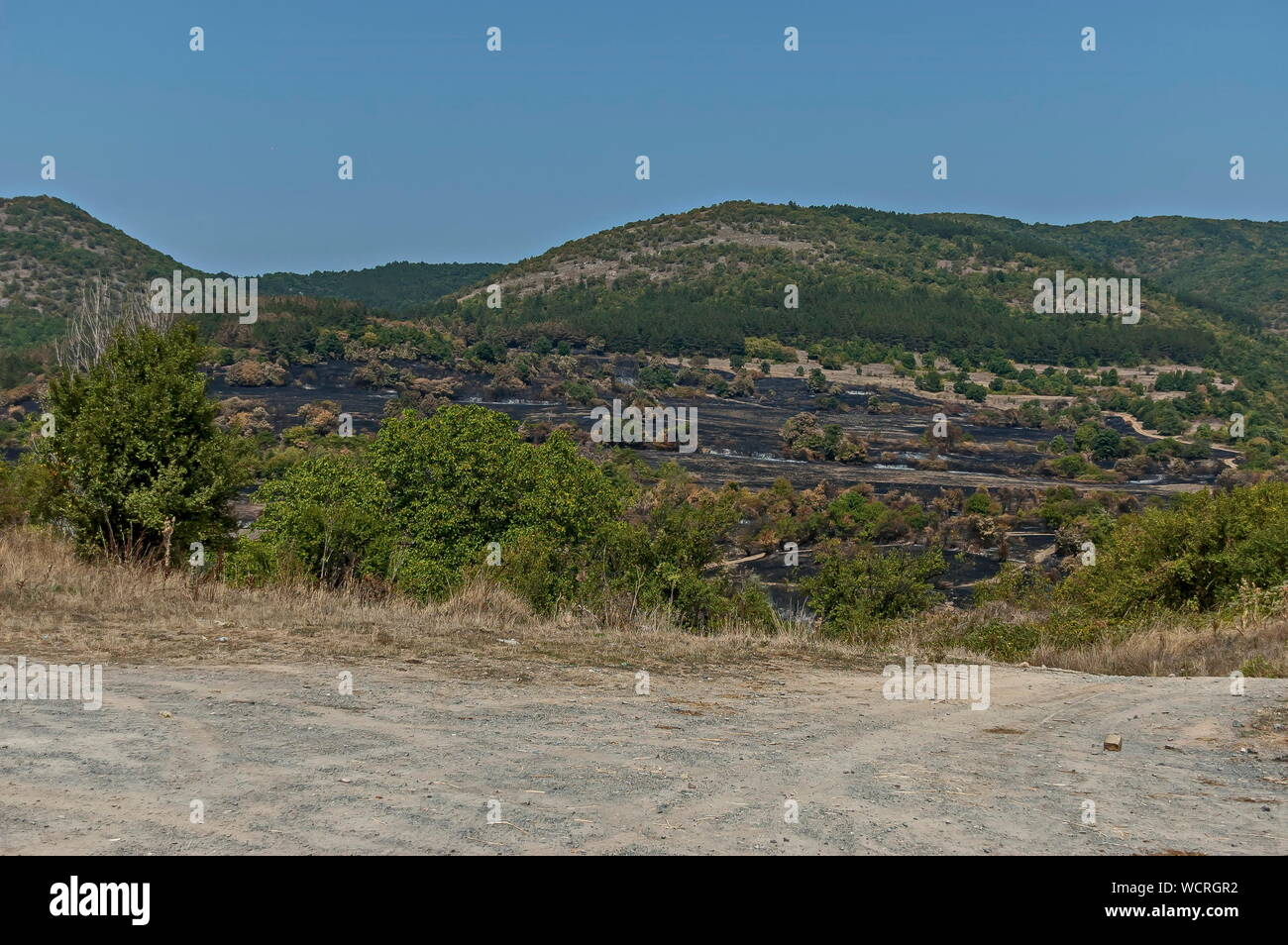 View of after forest fire in the Sredna gora mountain, Bulgaria Stock Photo