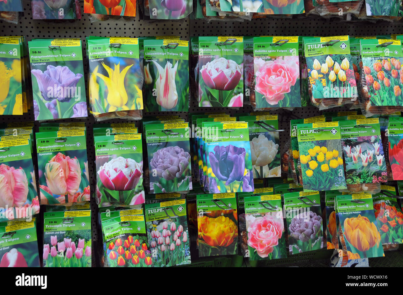 flower bulbs, Keukenhof, Netherlands, Europe Stock Photo