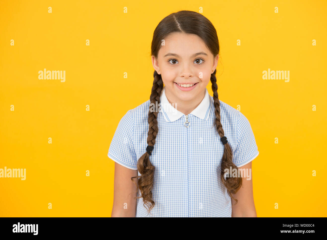Tidy Hairstyle Little Girl With Cute Braids Beautiful