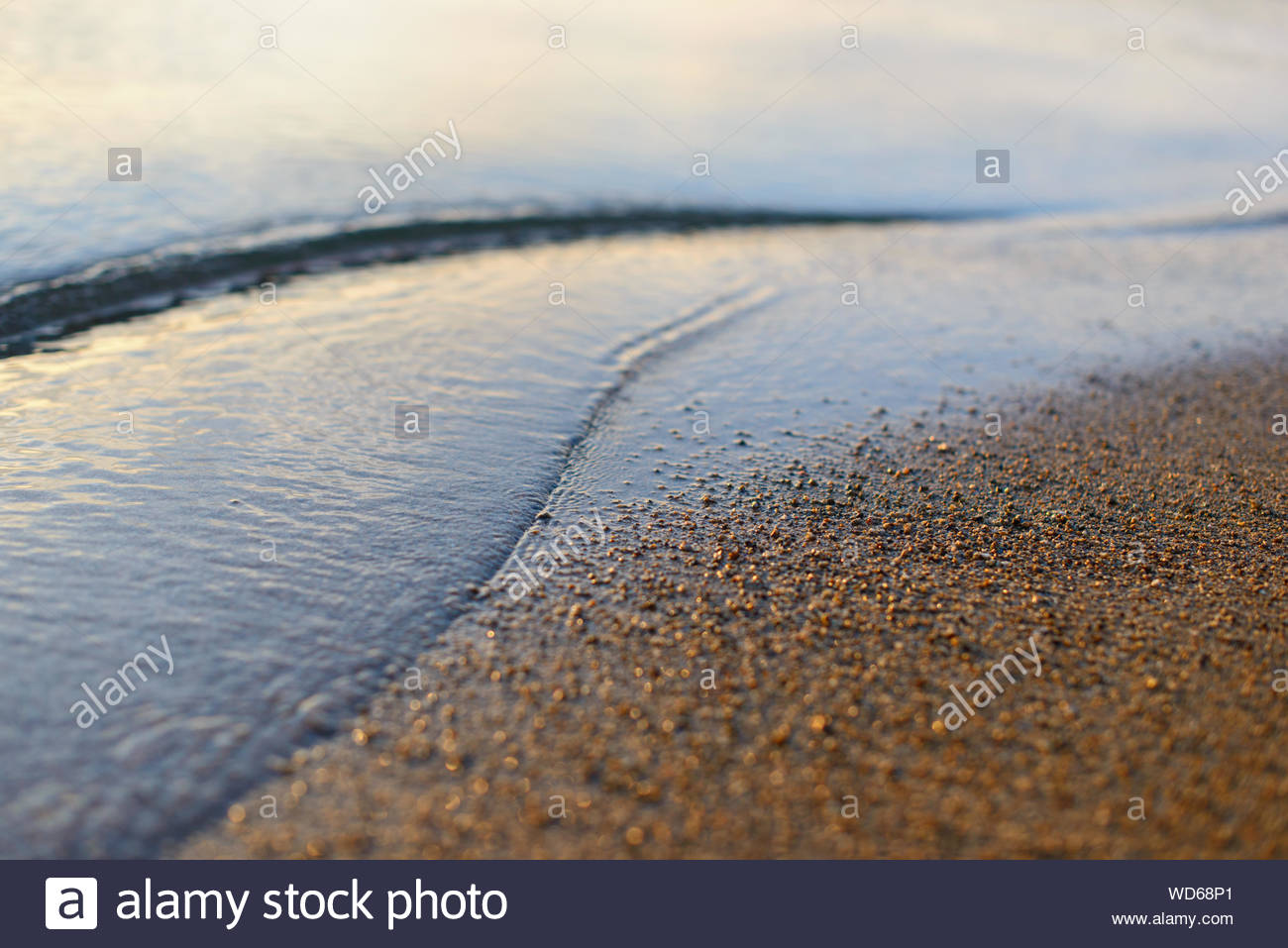 Sea Wave And Sand Seashore Golden Sun Light Over The Sea