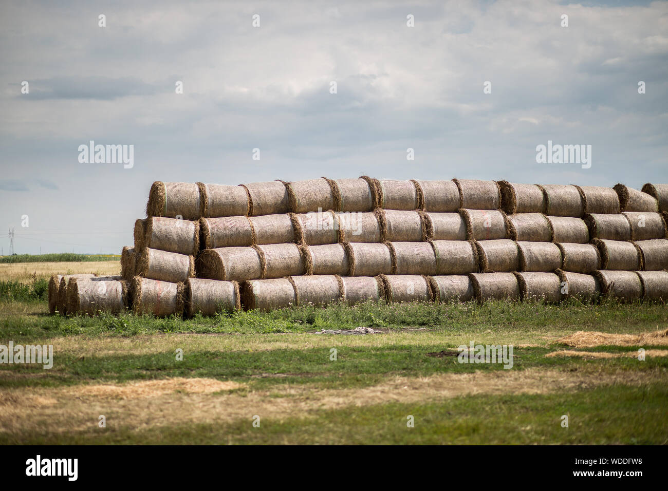 Stacked Hay Bales With Coverings On Field Against Cloudy Sky Stock Photo