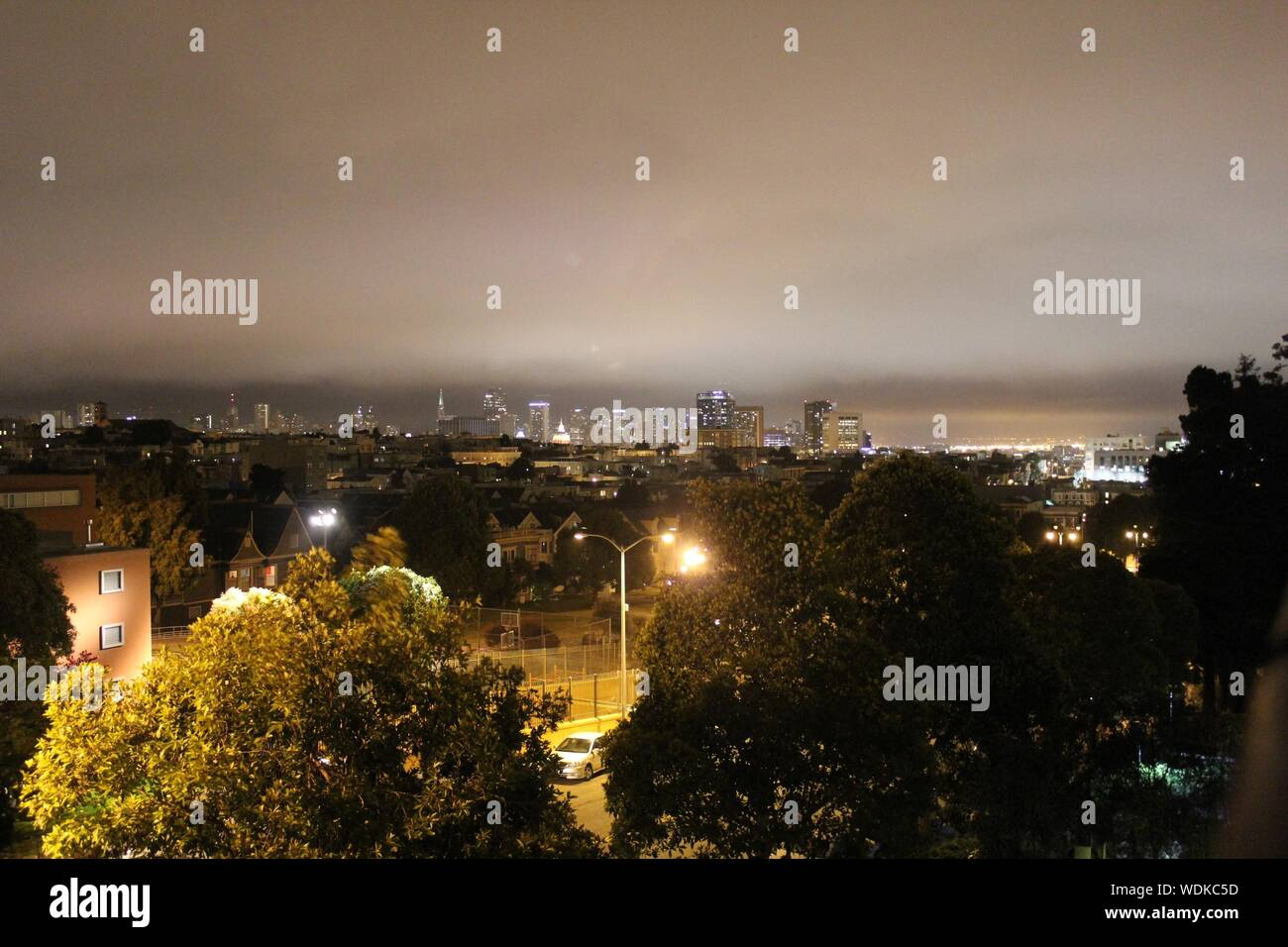 Trees And Buildings In Illuminated City During Night Stock Photo