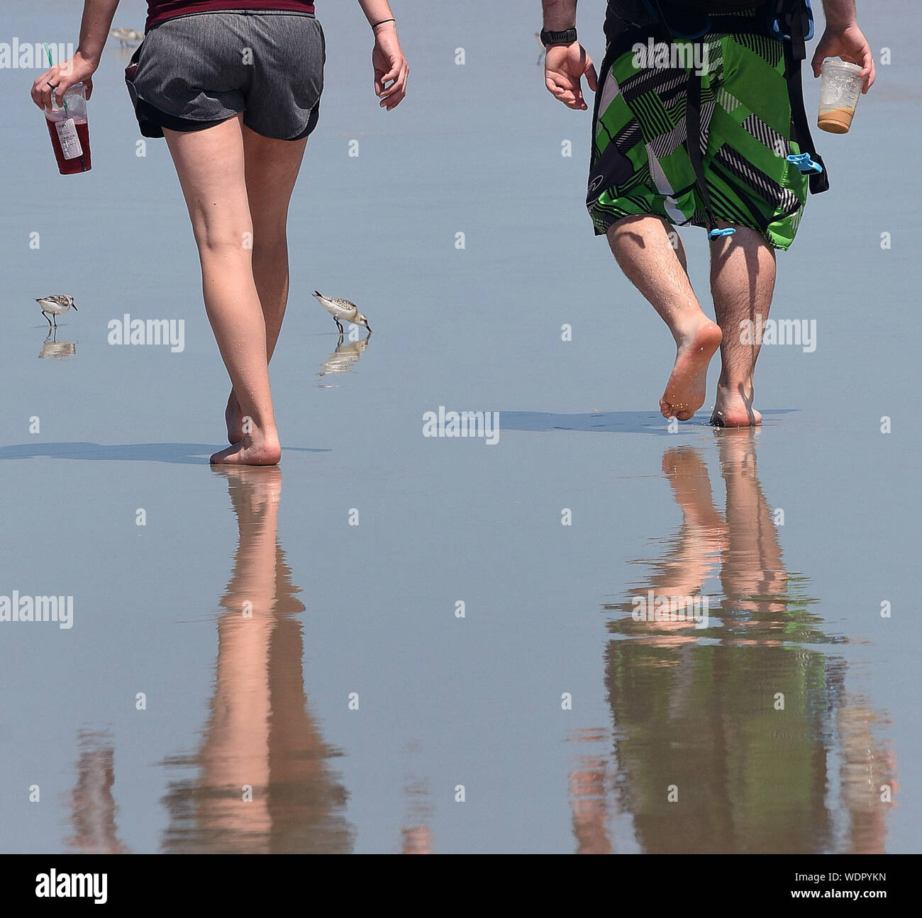 Titusville, FL, USA. 29th Aug, 2019. People walk at the beach several days ahead of the Hurricane Dorian which is expected to become a Category 4 hurricane before making landfall in Florida on Labor Day. Credit: Paul Hennessy/SOPA Images/ZUMA Wire/Alamy Live News Stock Photo