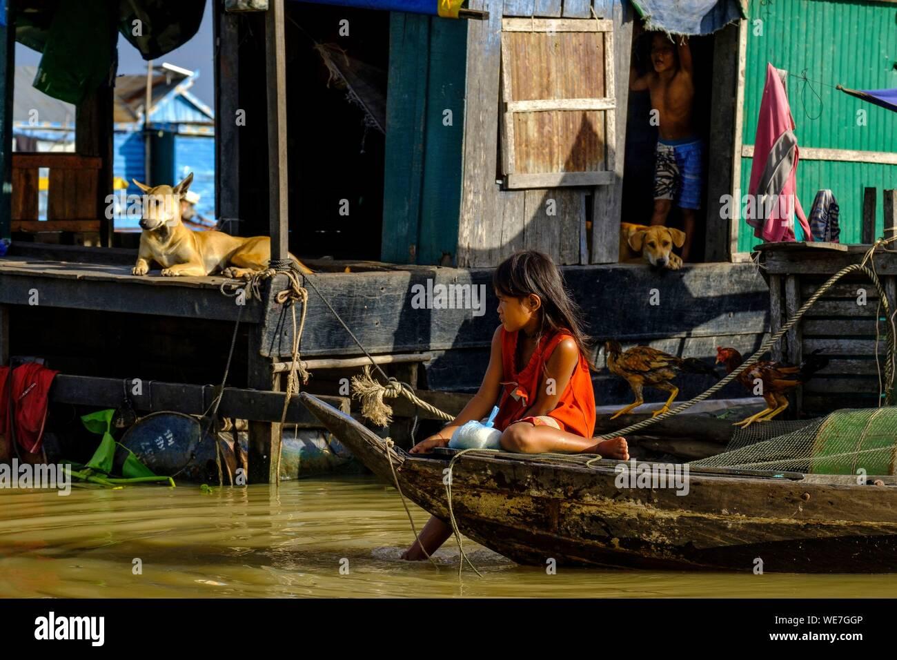 Dog Cambodia Stock Photos & Dog Cambodia Stock Images - Alamy