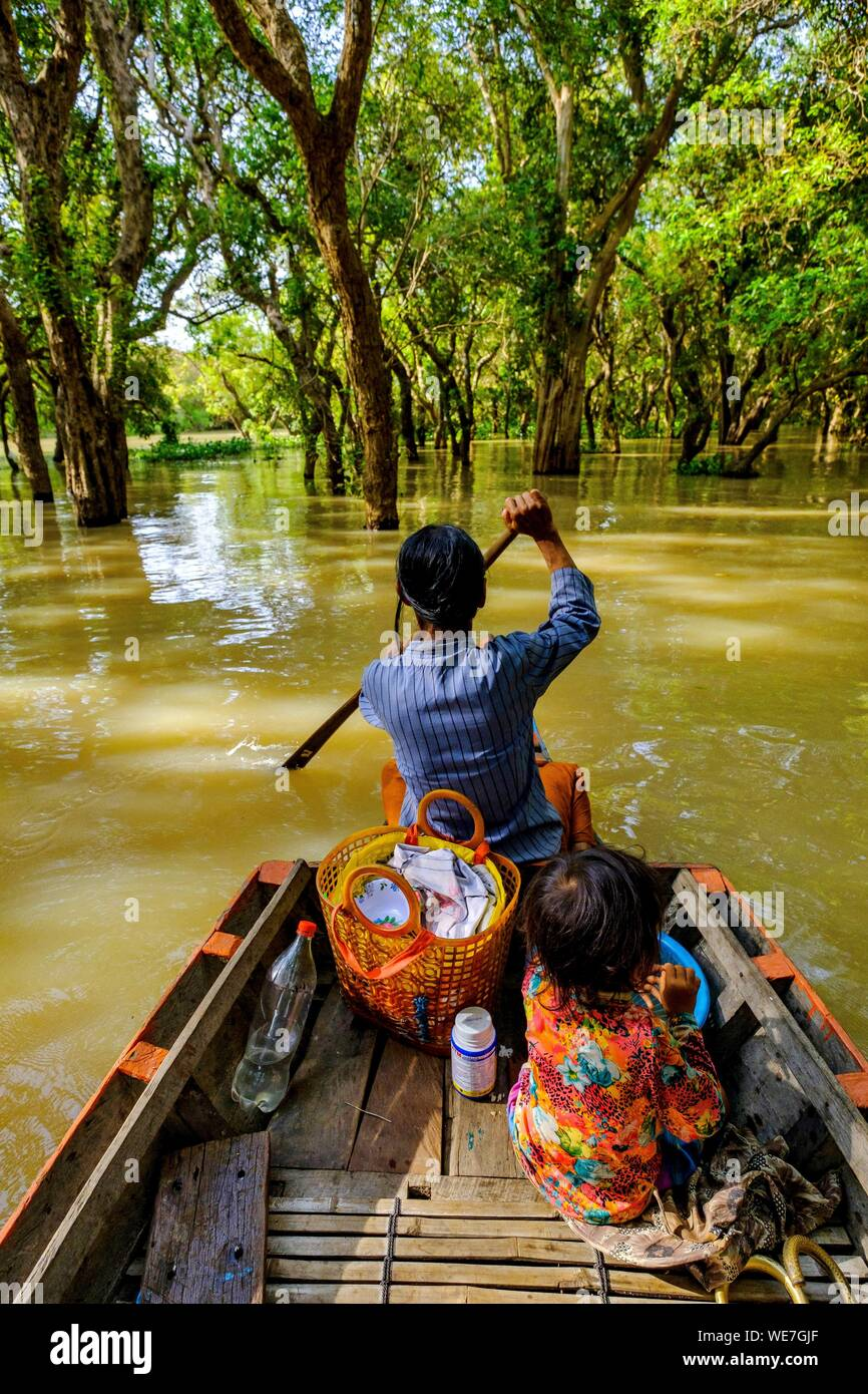 Cambodia, Kompong Phluc or Kampong Phluc, near Siem Reap, row boat in the flooded forest on the banks of Tonlé Sap lake Stock Photo