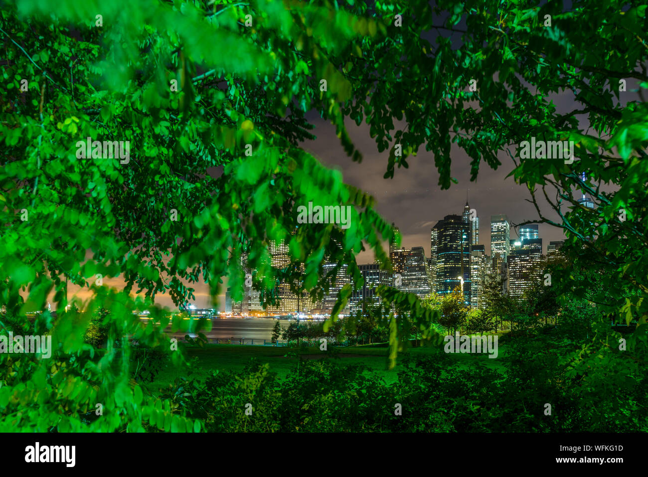 Trees Against Illuminated Buildings In Park At Night Stock Photo