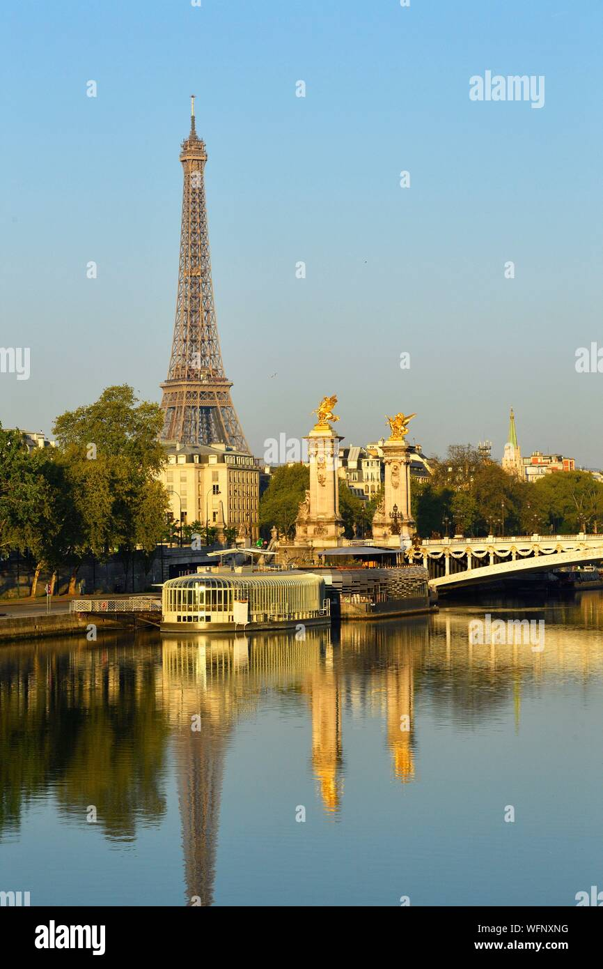 France, Paris, area listed as World Heritage by UNESCO, the Alexander III bridge and the Eiffel Tower on the background Stock Photo
