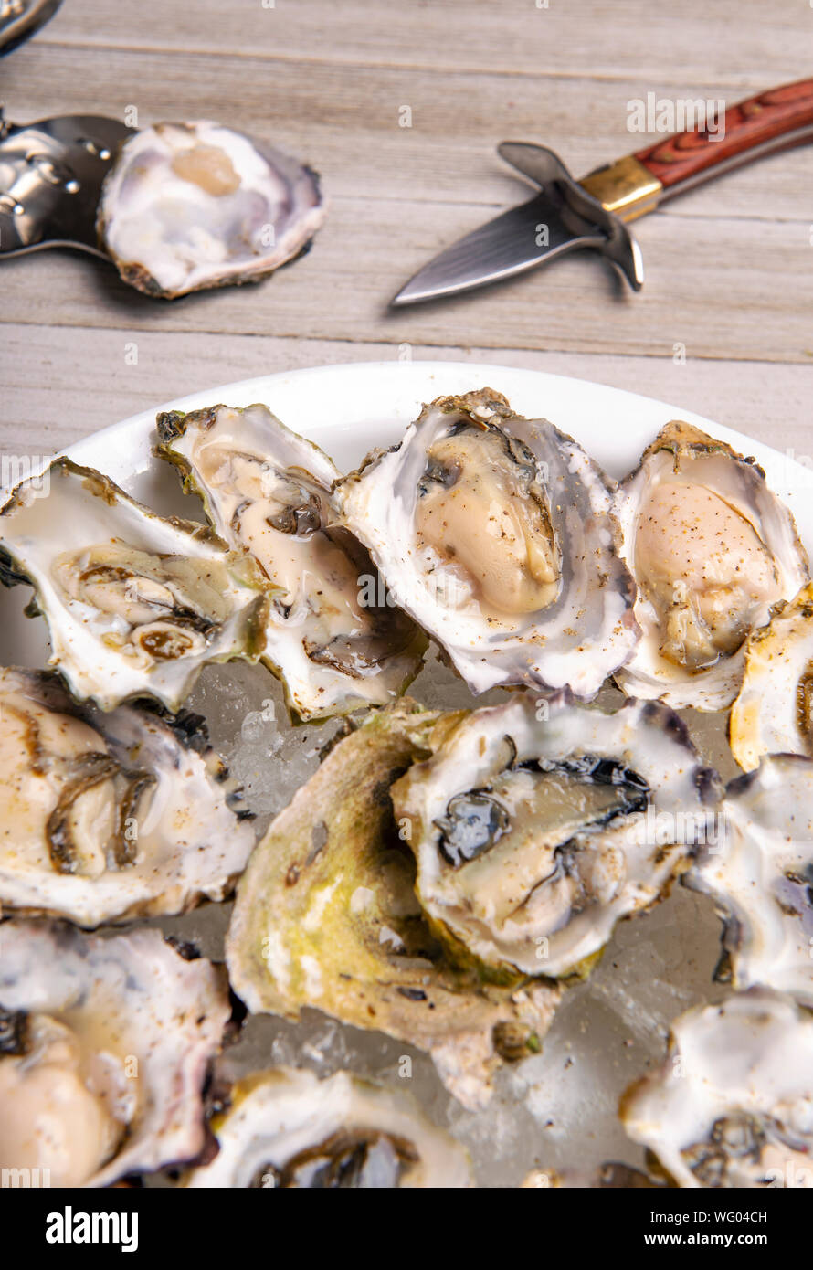 Detail of a plate with fresh shucked oysters from the Canadian west coast over wood background Stock Photo