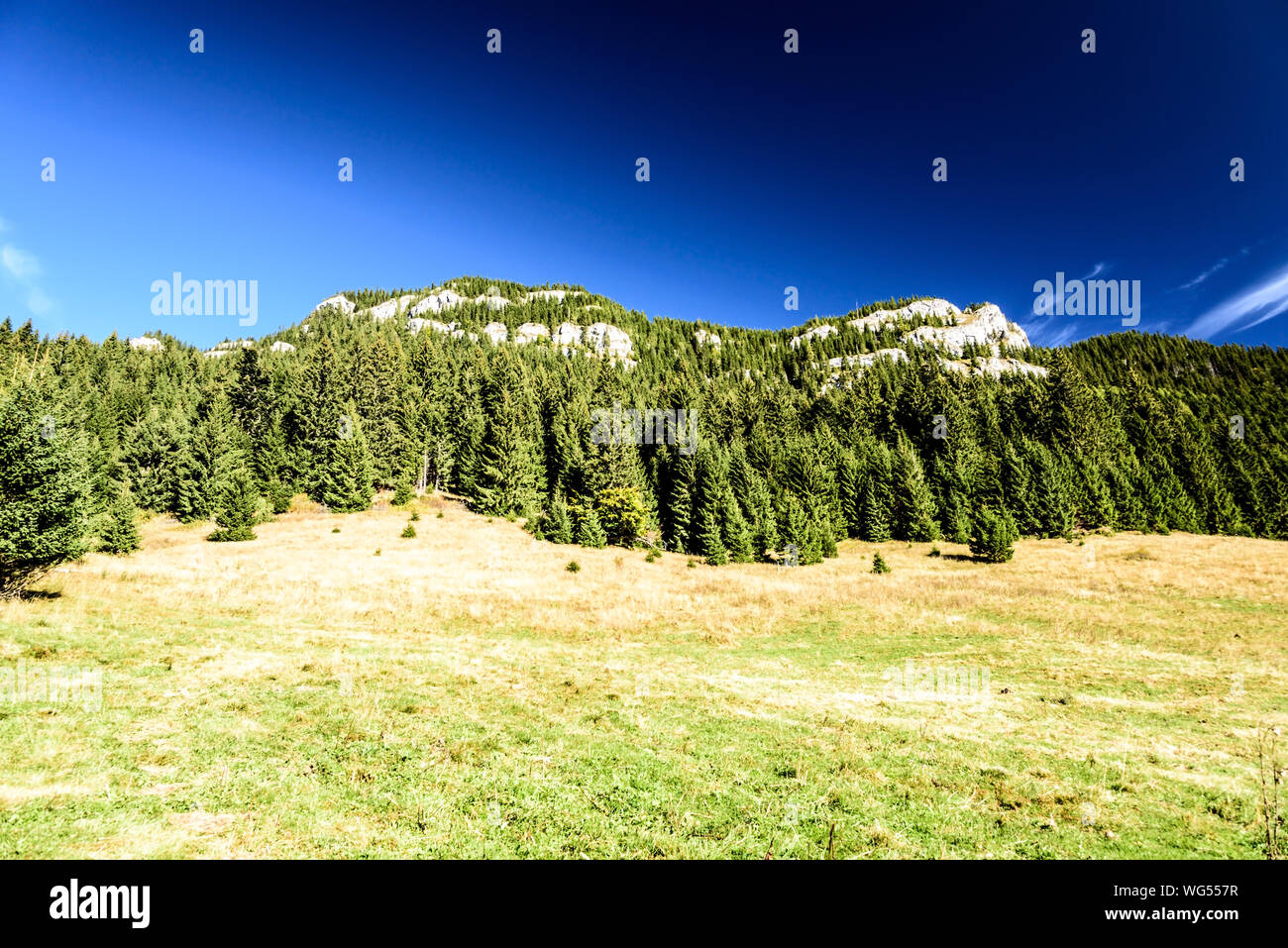 Svidovske sedlo mountain pass covered by mountain meadow with forest and limestone rock of Ohniste hill in autumn Nizke Tatry mountains in Slovakia Stock Photo