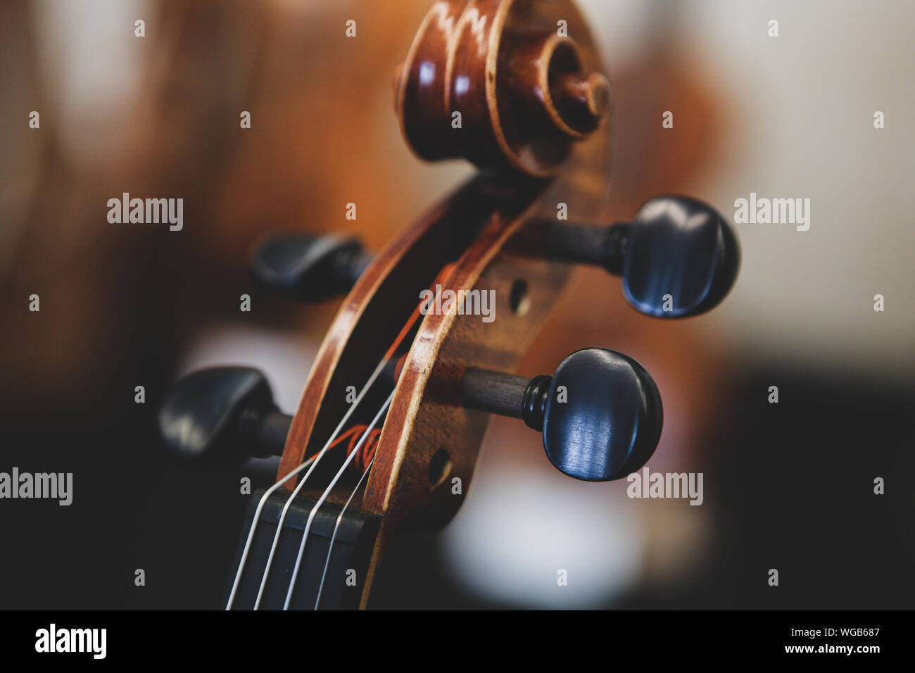 Details with the scroll, peg box, tuning pegs, strings, neck and fingerboard of a violin before a symphonic classical concert Stock Photo