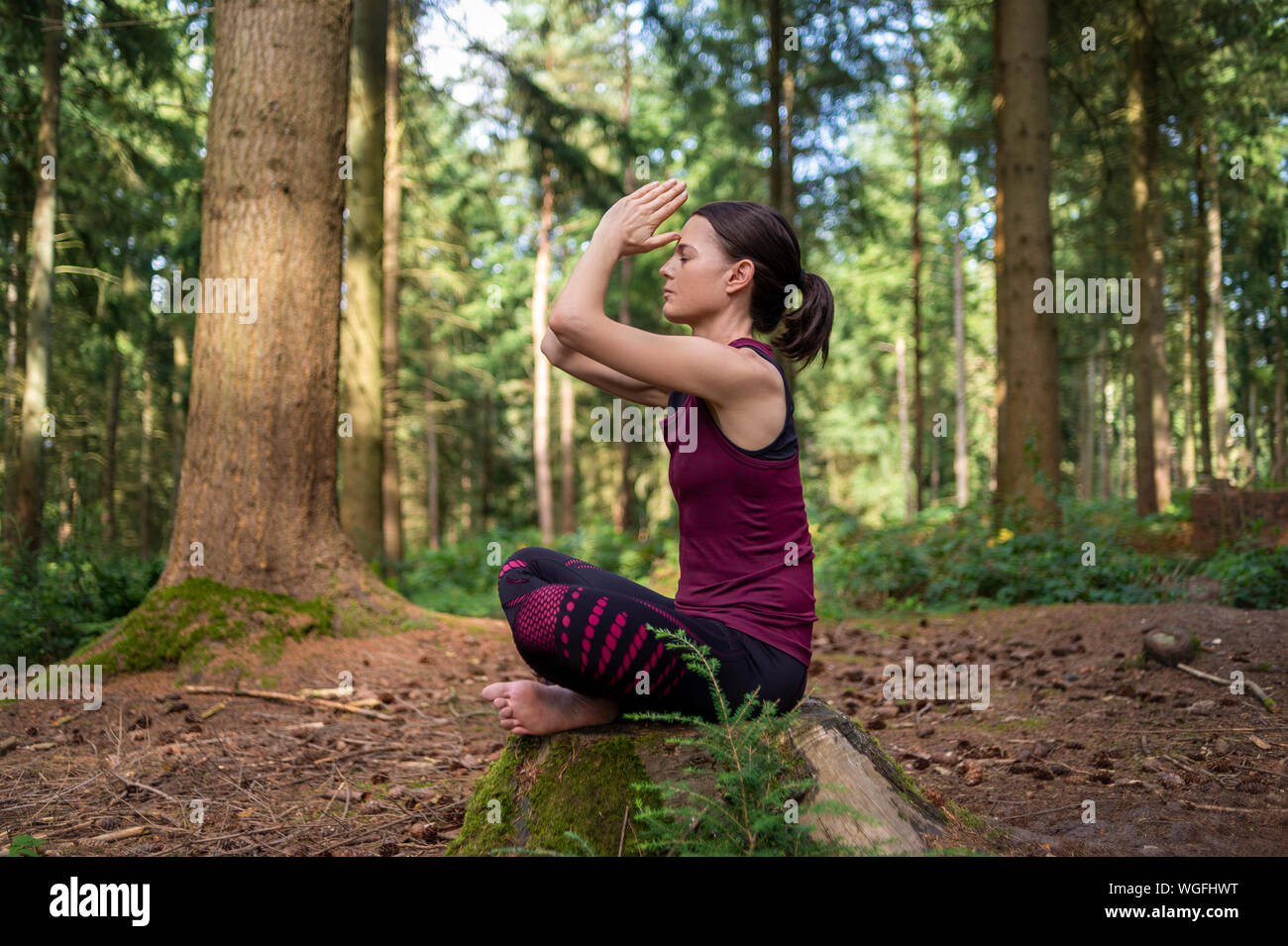 woman sitting on a tree stump in a forest meditating, practicing yoga. Stock Photo