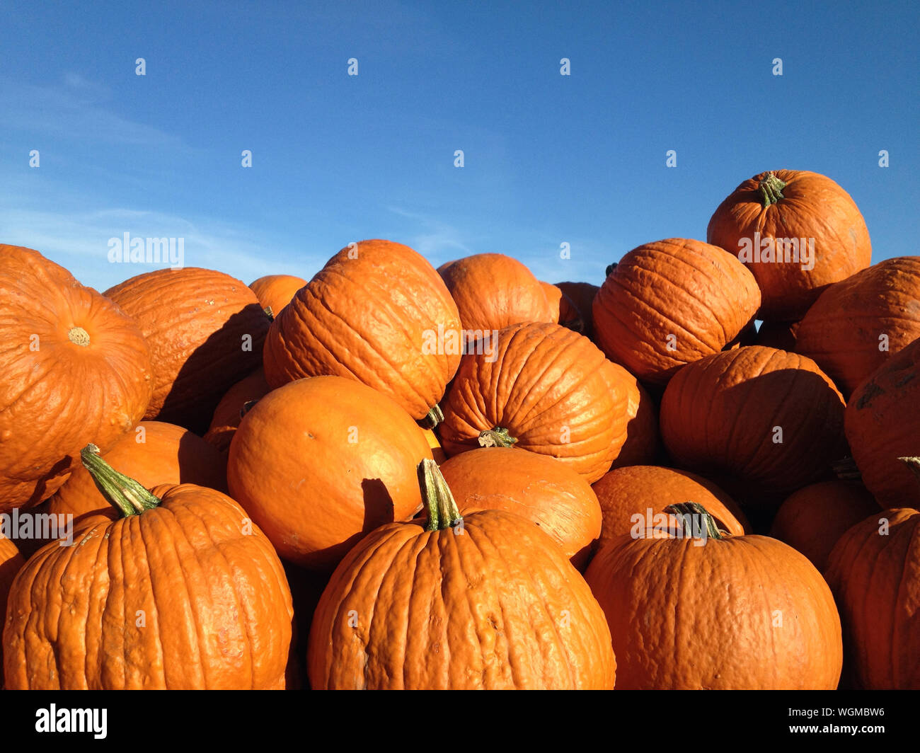 Stack Of Pumpkins Against Sky Stock Photo