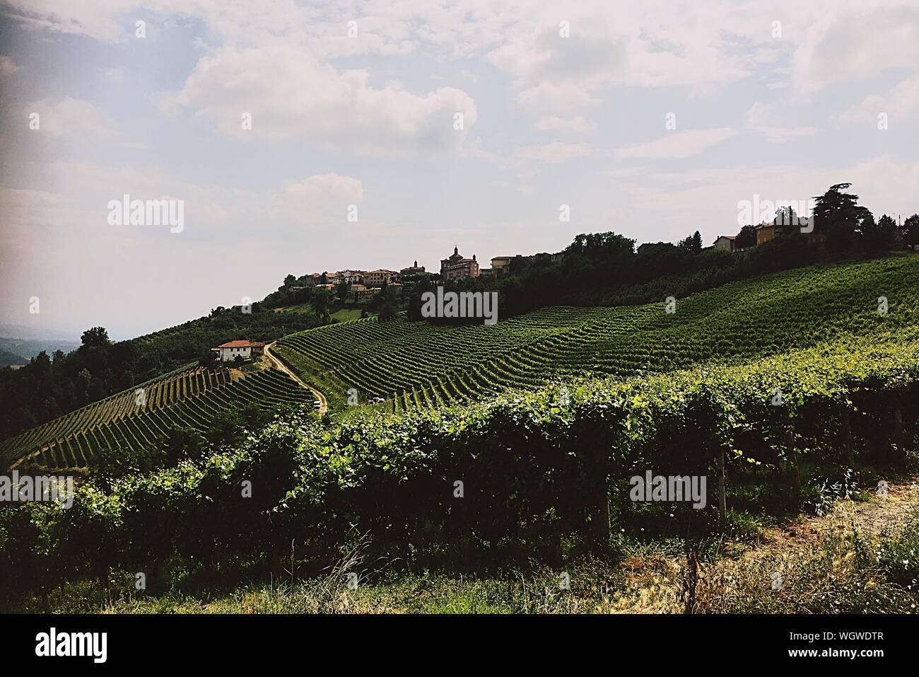 Scenic View Of Field Against Cloudy Sky Stock Photo