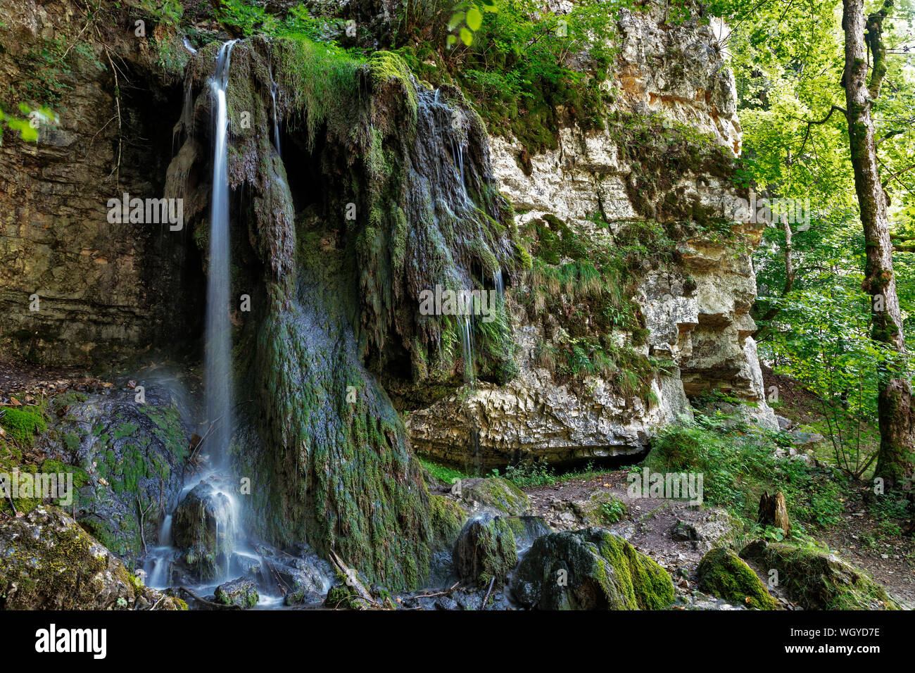 Tannegger Waterfall with its bizarre tufa formation in the Wutach Gorge Nature Reserve, Black Forest, Baden-Württemberg, Germany Stock Photo