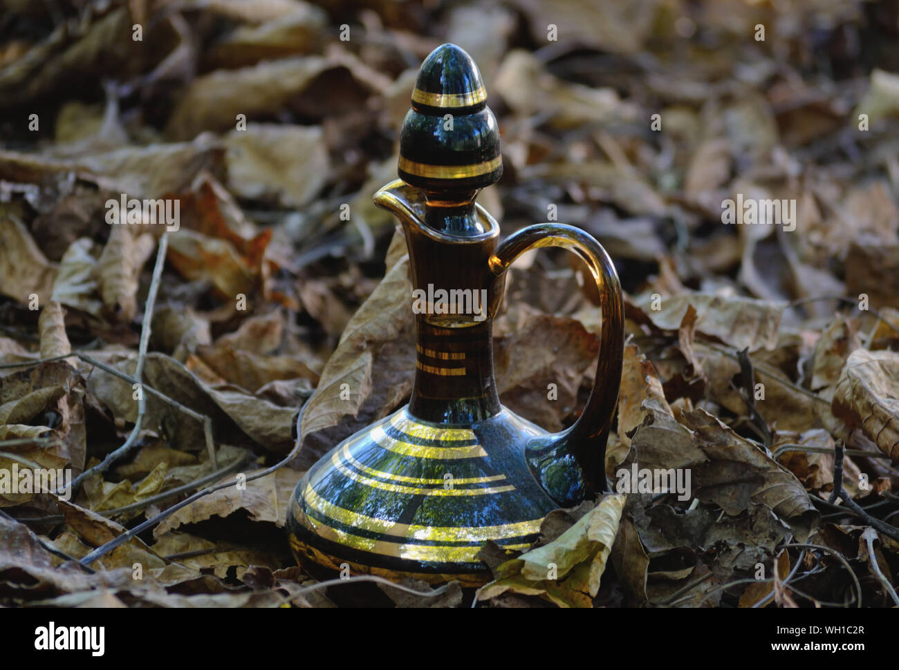 Traditional glass flagon on a fallen leaves Stock Photo