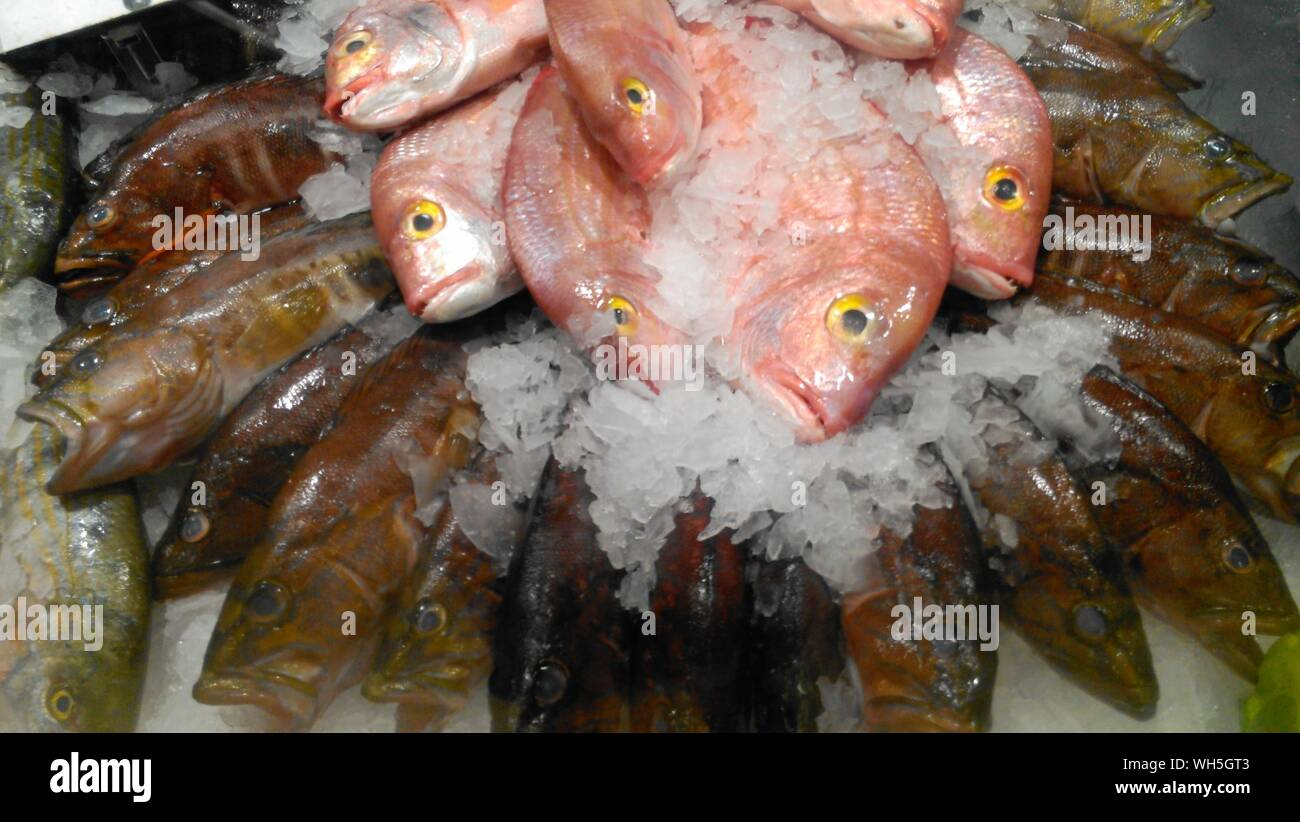 High Angle View Of Fishes At Market - Stock Photo