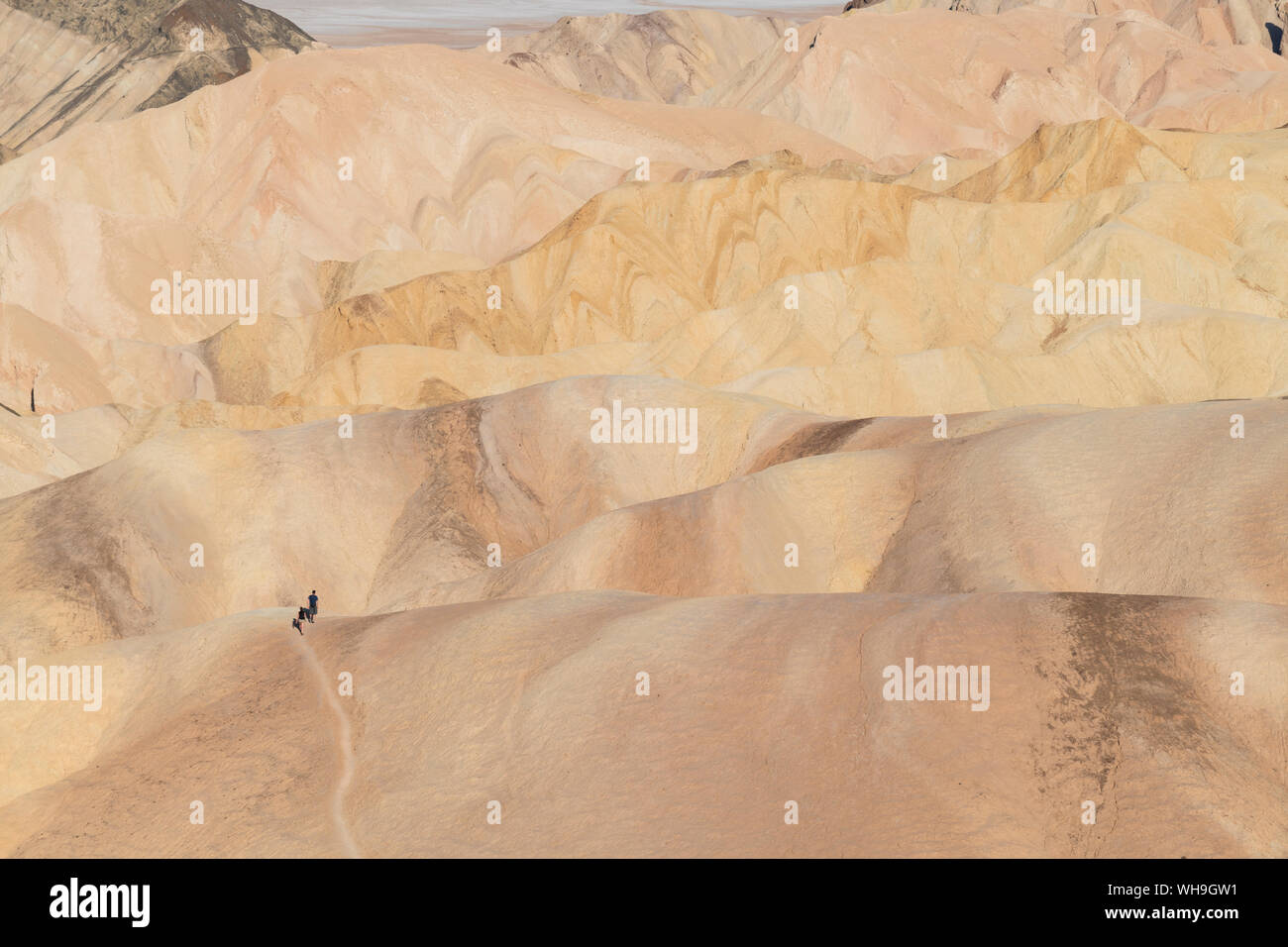 Zabriskie Point in Death Valley National Park, California, United States of America, North America Stock Photo