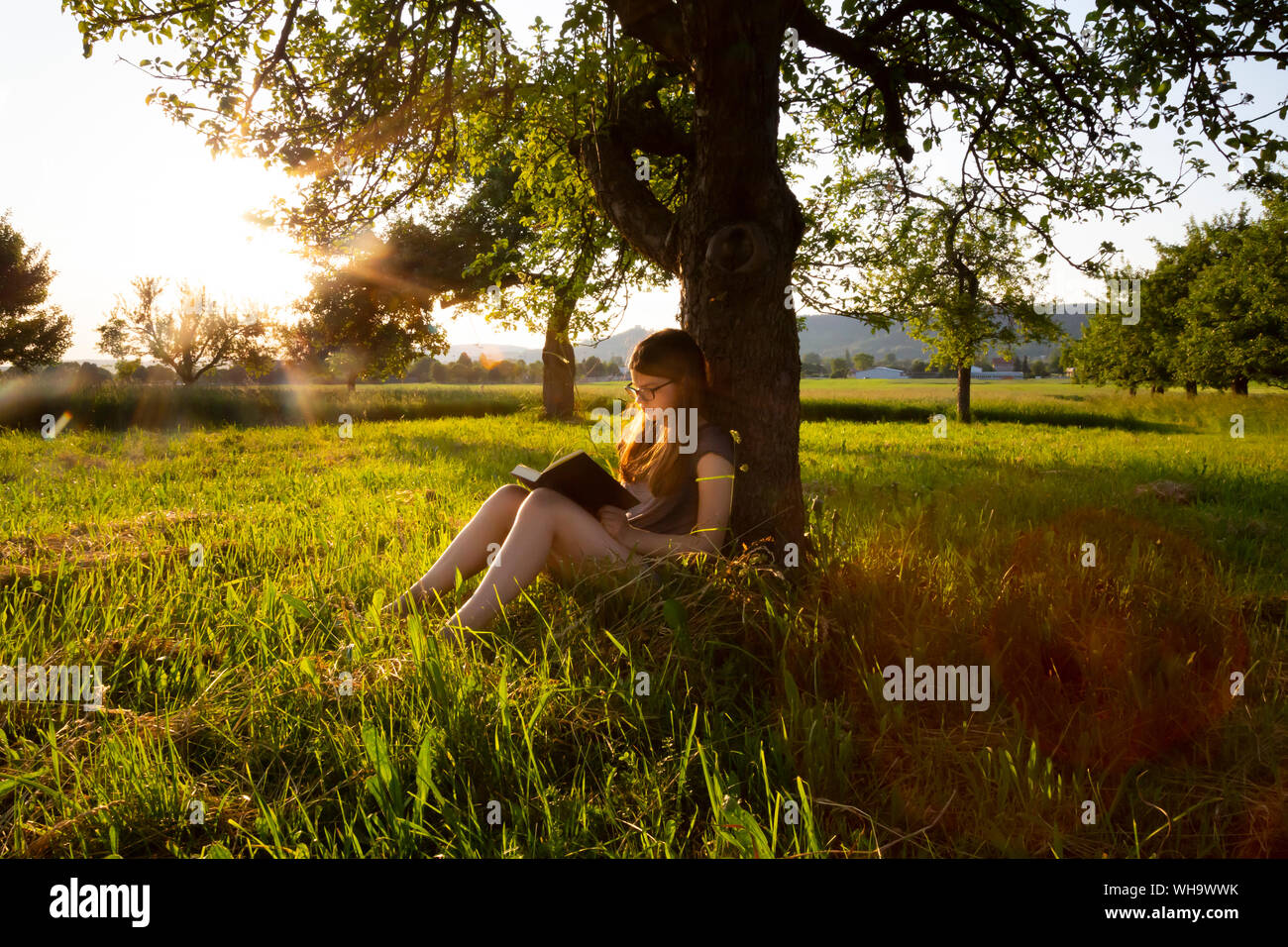 Little girl leaning against tree trunk at sunset reading a book Stock Photo