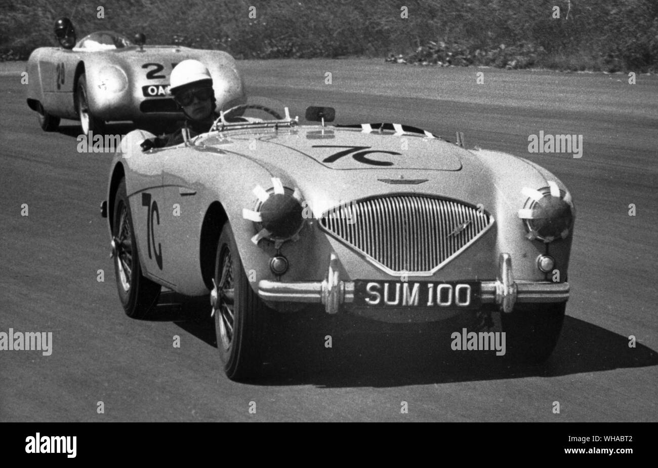 An early Austin Healey 100 at Silverstone in 1955. Behind it is a Buckler DD-1 Stock Photo