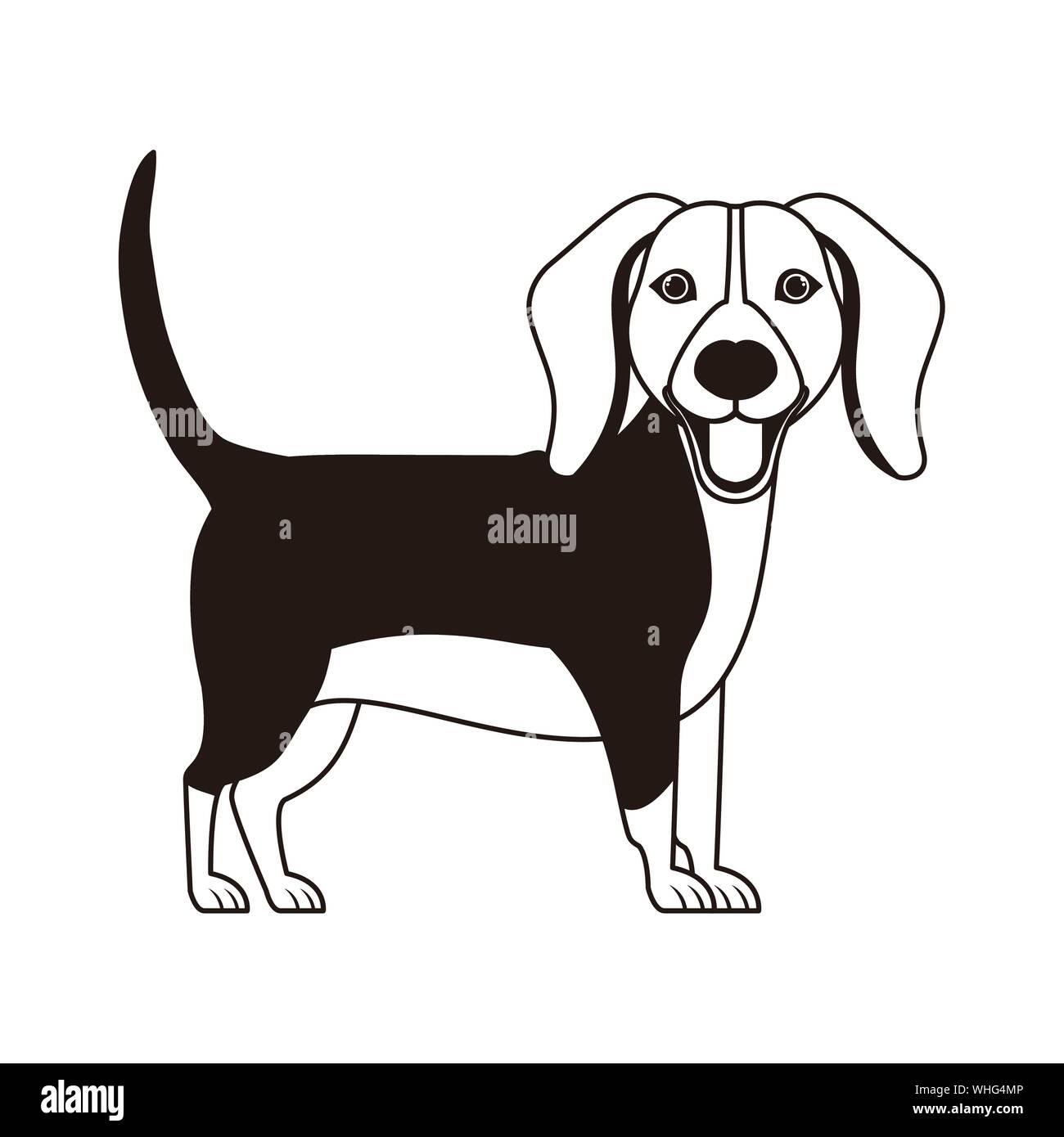 silhouette of cute beagle dog on white ...