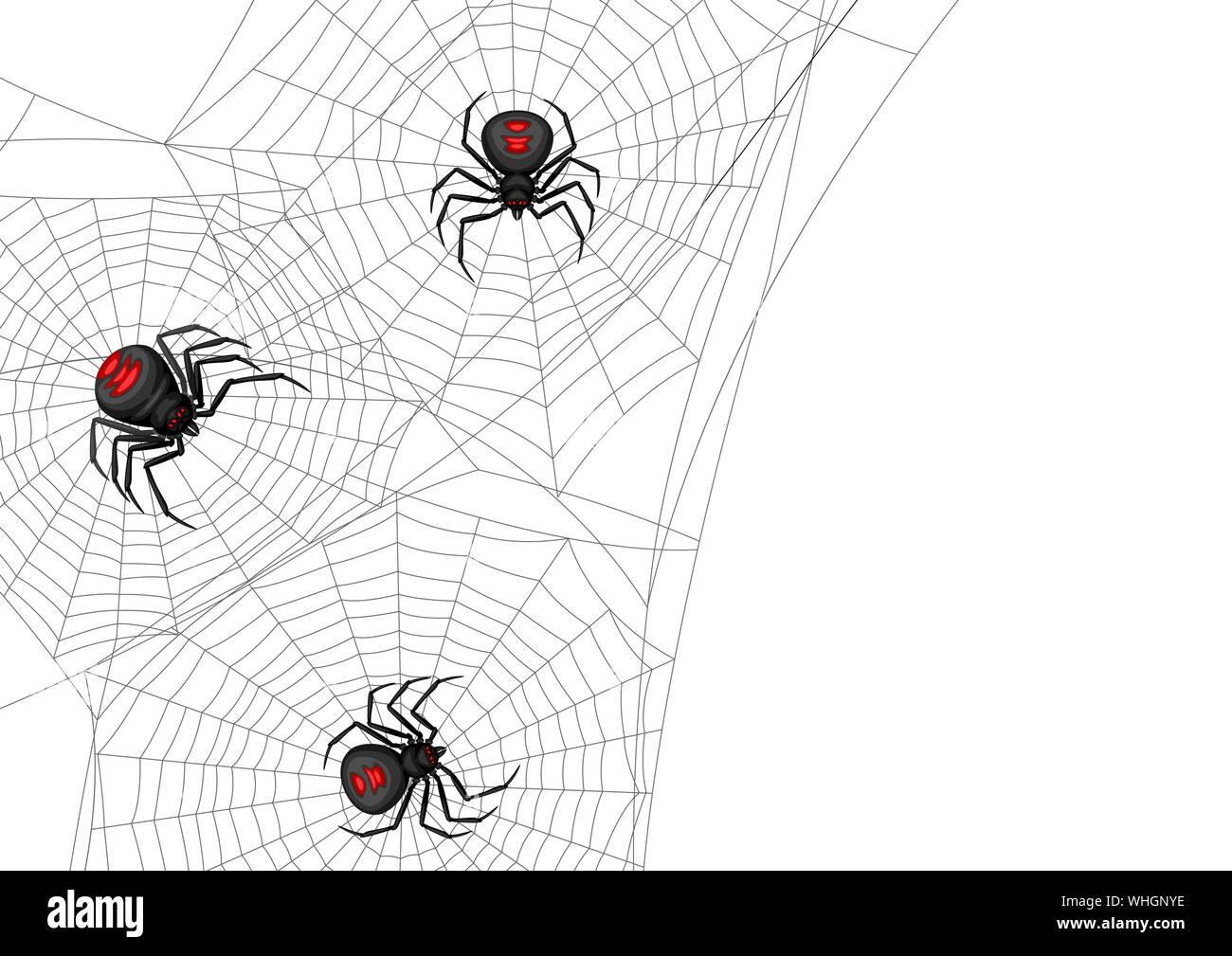 Background With Black Widow Spiders Stock Vector Image Art Alamy