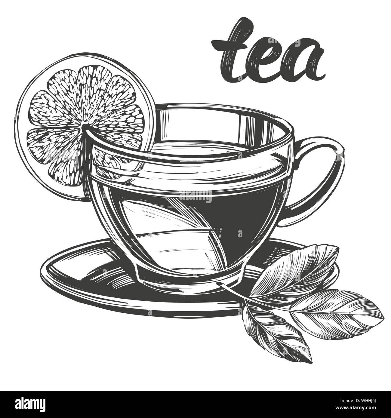 Cup Of Tea With Lemon Isolated On White Background Hand Drawn Vector Illustration Realistic Sketch Stock Vector Image Art Alamy