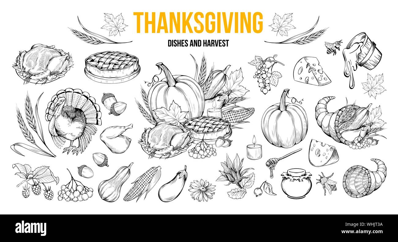 - Thanksgiving Coloring Book Illustrations Set. Traditional Autumn