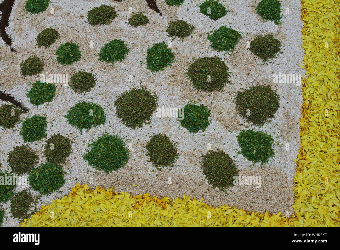 flower petals, grains, rice, beans and seeds making an abstract pattern in of Castelraimondo in the Marche region of Italy to celebrate Corpus Christi Stock Photo