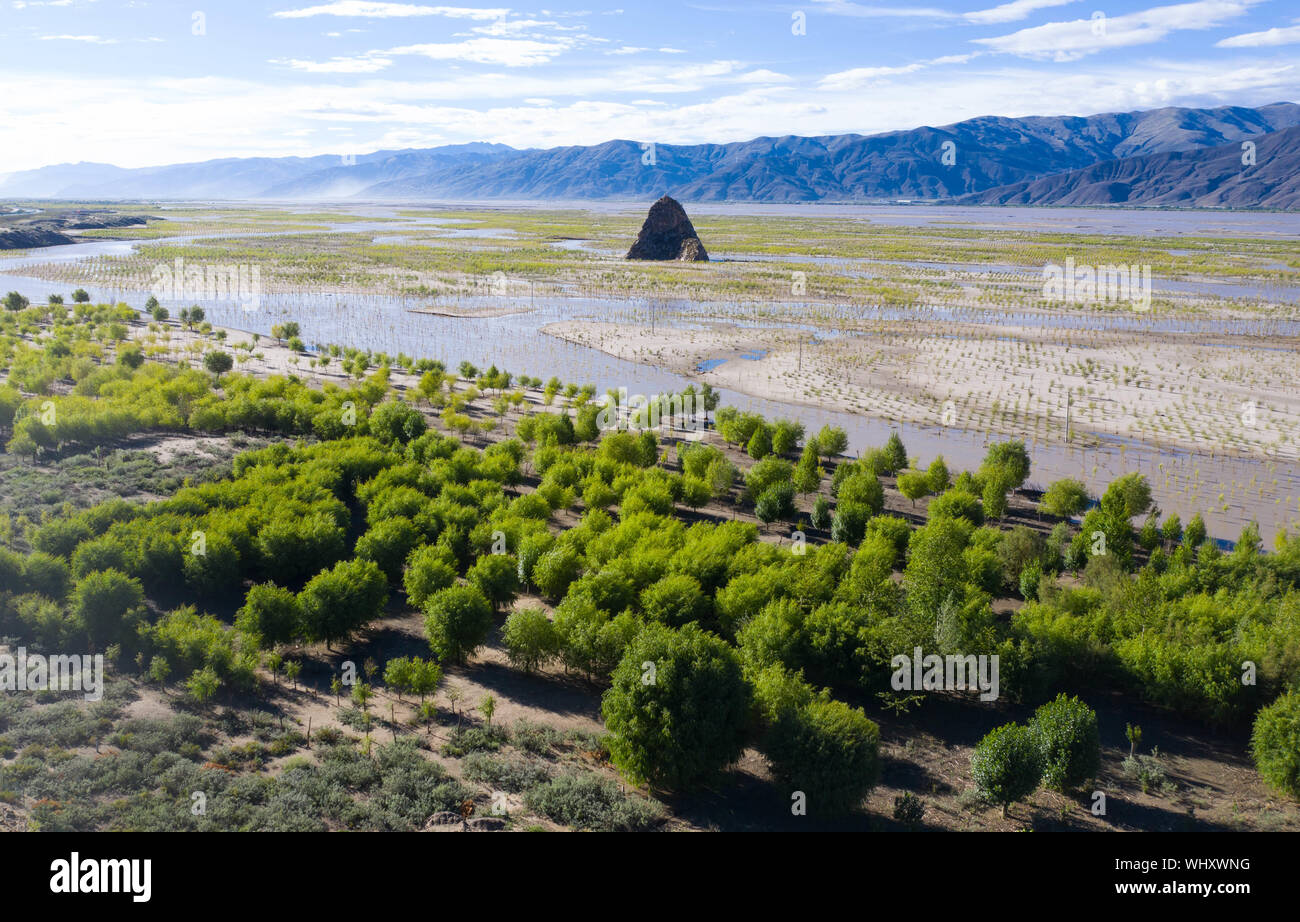 Beijing, China. 16th July, 2019. Aerial photo taken on July 16, 2019 shows trees planted along banks of the Yarlung Zangbo River in southwest China's Tibet Autonomous Region. China has adopted the vision that lucid waters and lush mountains are invaluable assets and pursued a holistic approach to conserving its mountains, rivers, forests, farmlands, lakes, and grasslands. At the very highest levels, China is driving the way forward in the construction of an ecological civilization. Credit: Purbu Zhaxi/Xinhua/Alamy Live News Stock Photo