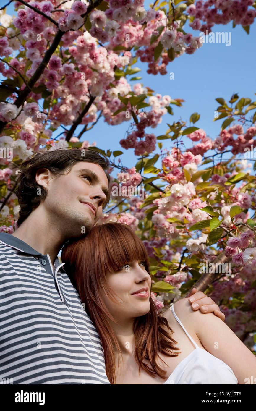 Dating login blossoms cherry CherryBlossoms