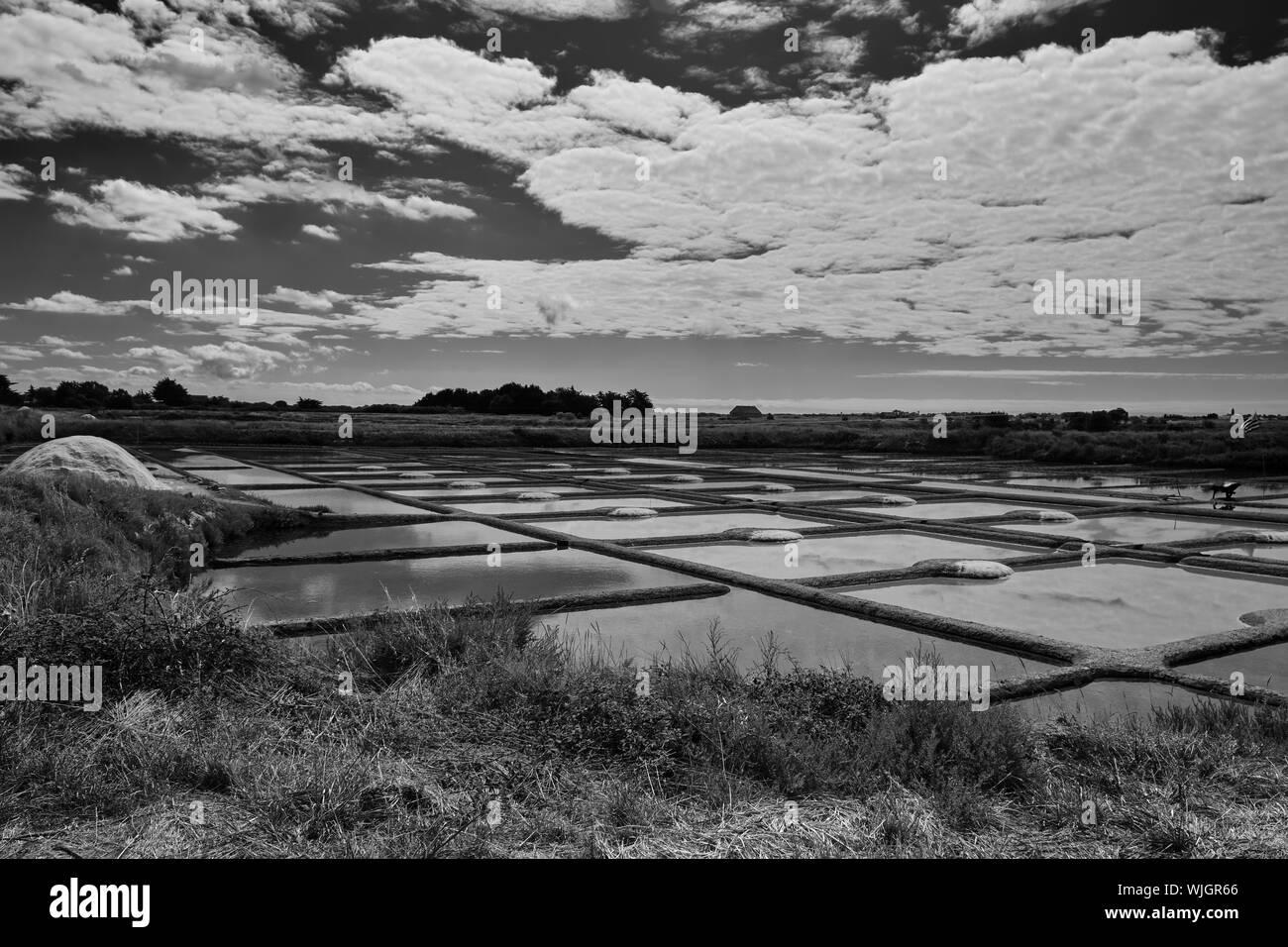 The salt flats in Guérande Loire-Atlantique Pays de la Loire Stock Photo