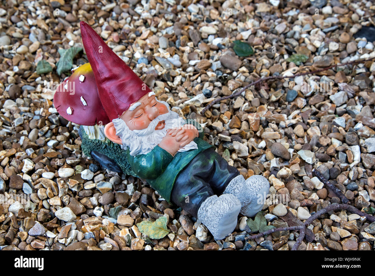 Garden gnome sleeping with his head resting on a toadstool. Stock Photo