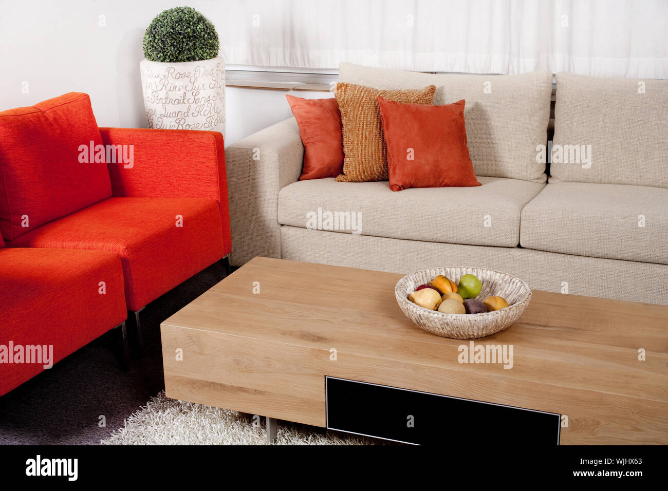 Modern Furniture Design With Couches In Two Colors In Living