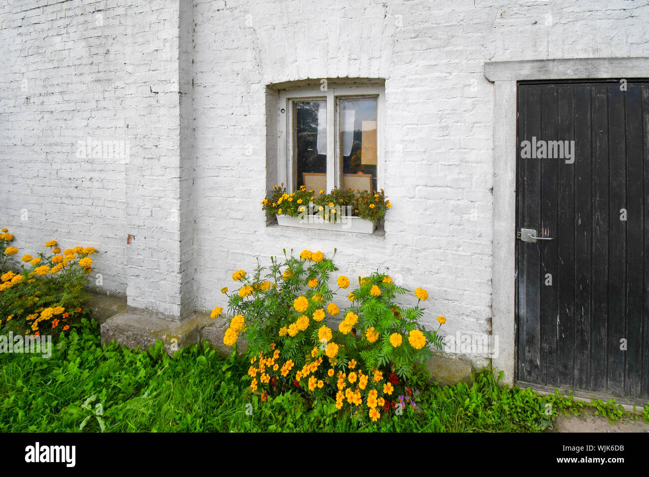 White Painted Garden Wall High Resolution Stock Photography And Images Alamy