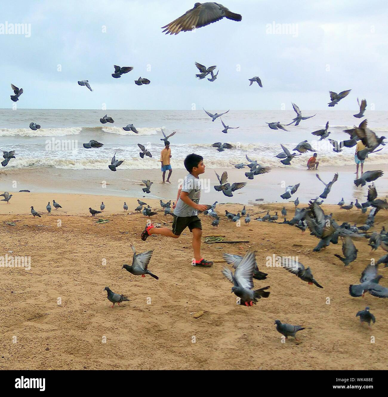 Side View Of Boy Running By Pigeon At Beach Stock Photo