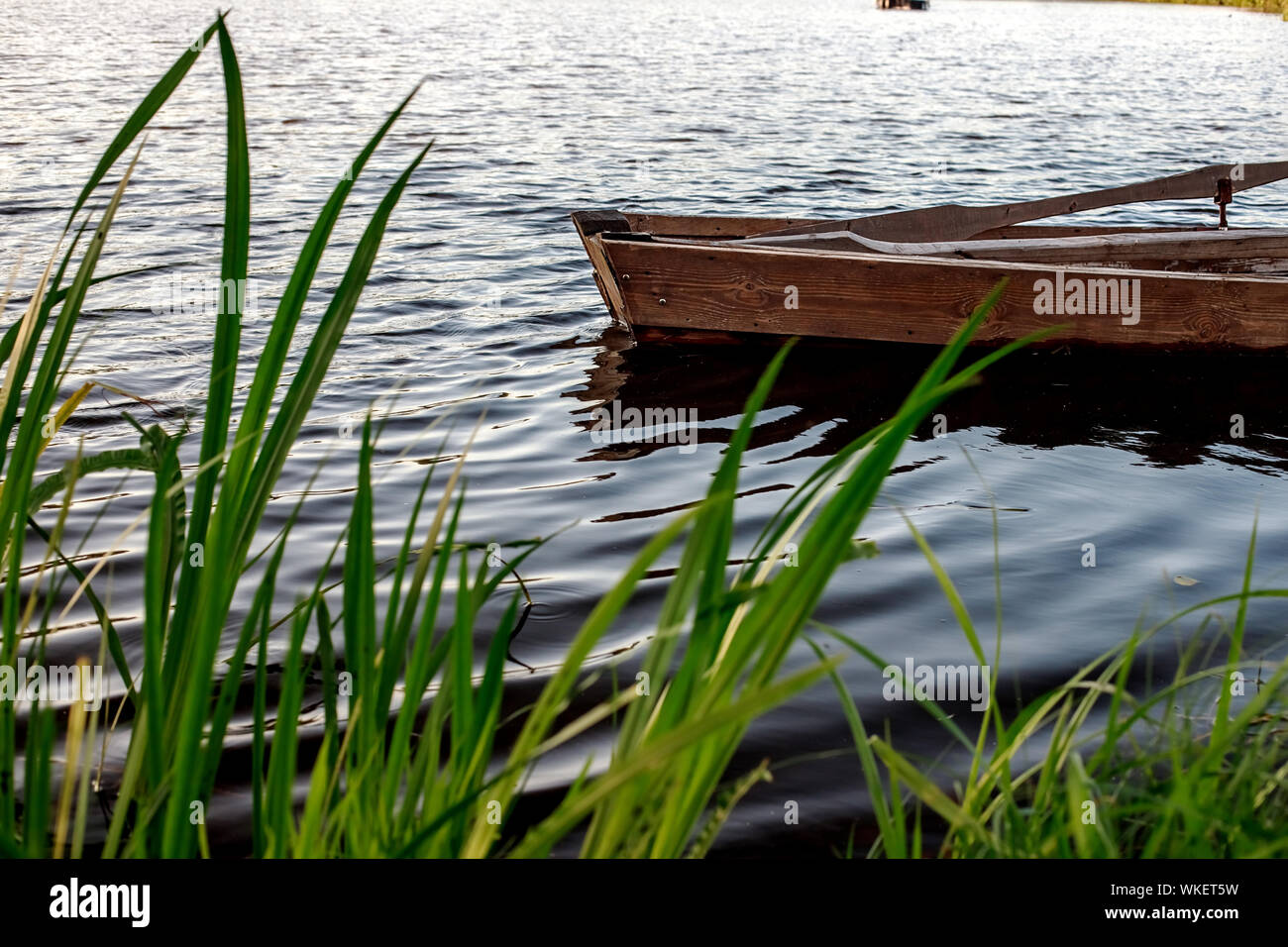 A small wooden rowing boat with a broken bottom on a calm lake near the shore. Belarus Stock Photo