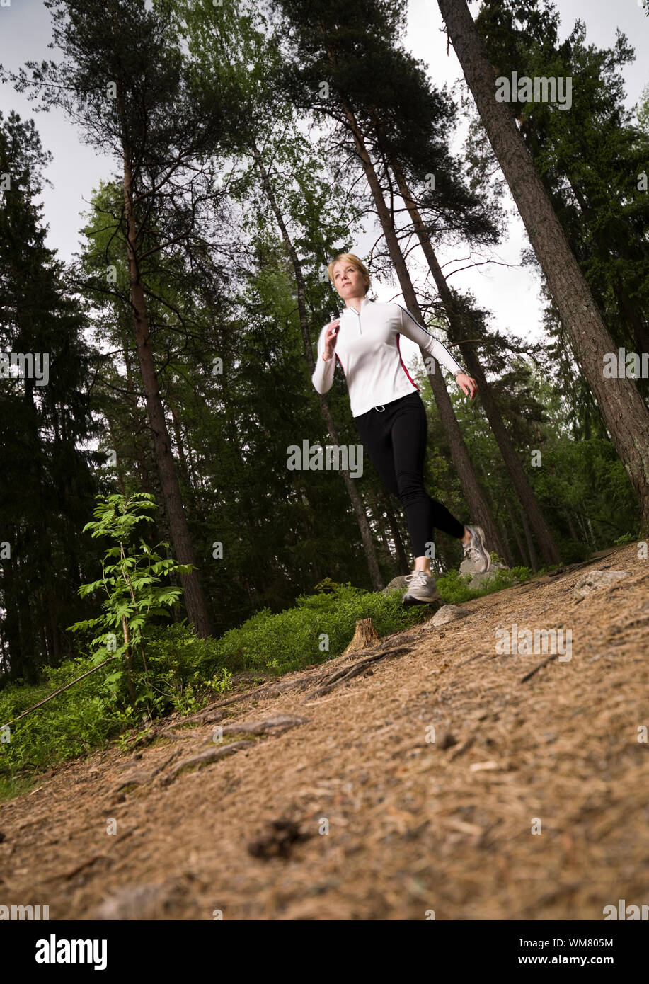 Woman running in the woods Stock Photo