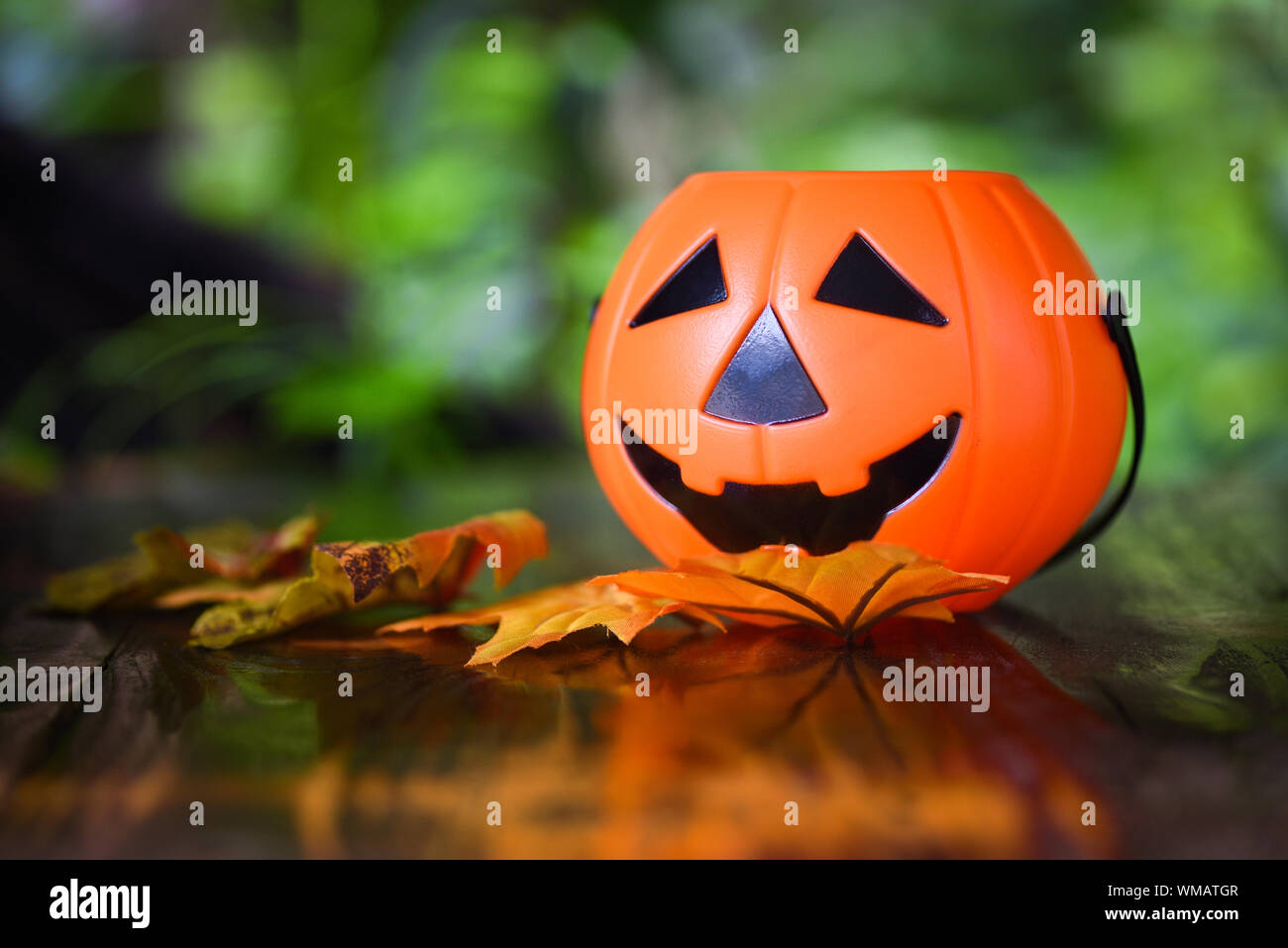 Halloween Pumpkin Accessories.Halloween Background Decorated Holidays Festive Concept Leaves Autumn Pumpkin Halloween Decorations For Party Accessories Object On Wooden Nature Gr Stock Photo Alamy
