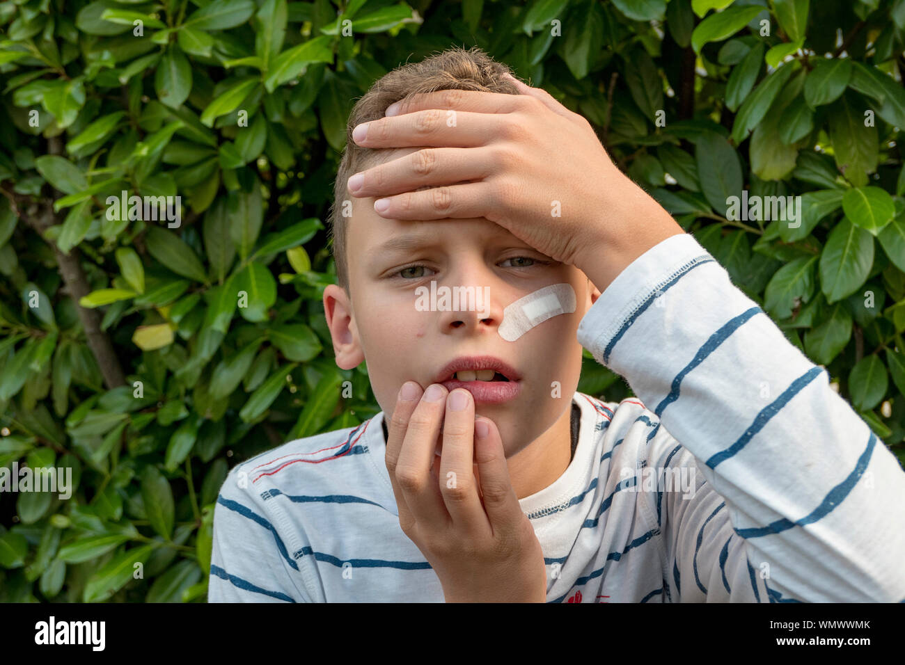 Boy with plaster on his face in front of a hedge looks sad Stock Photo
