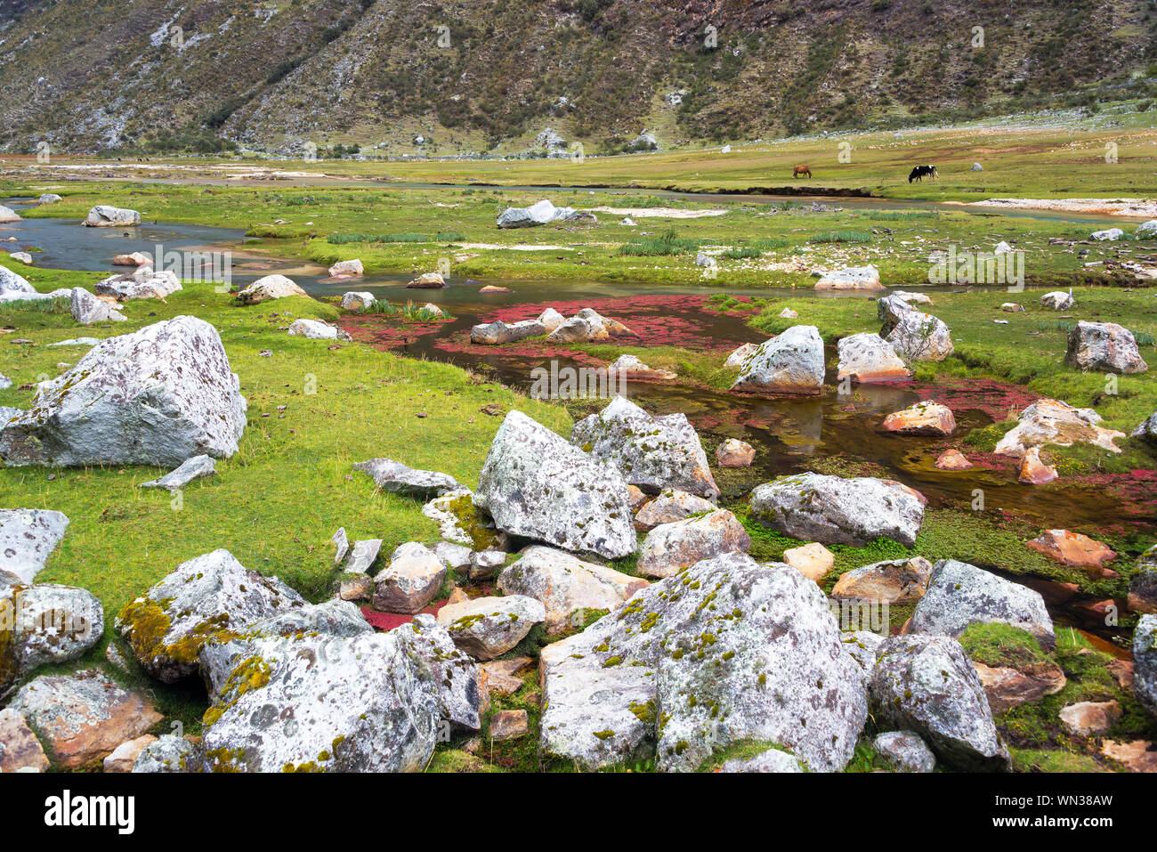 Stream Flowing Through Lush Green Valley At Cordillera Blanca In Andes Mountain Stock Photo