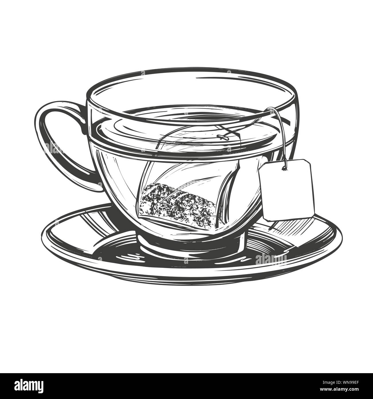 Cup Of Tea With Brewed Tea Bag Isolated On White Background Hand Drawn Vector Illustration Realistic Sketch Stock Vector Image Art Alamy