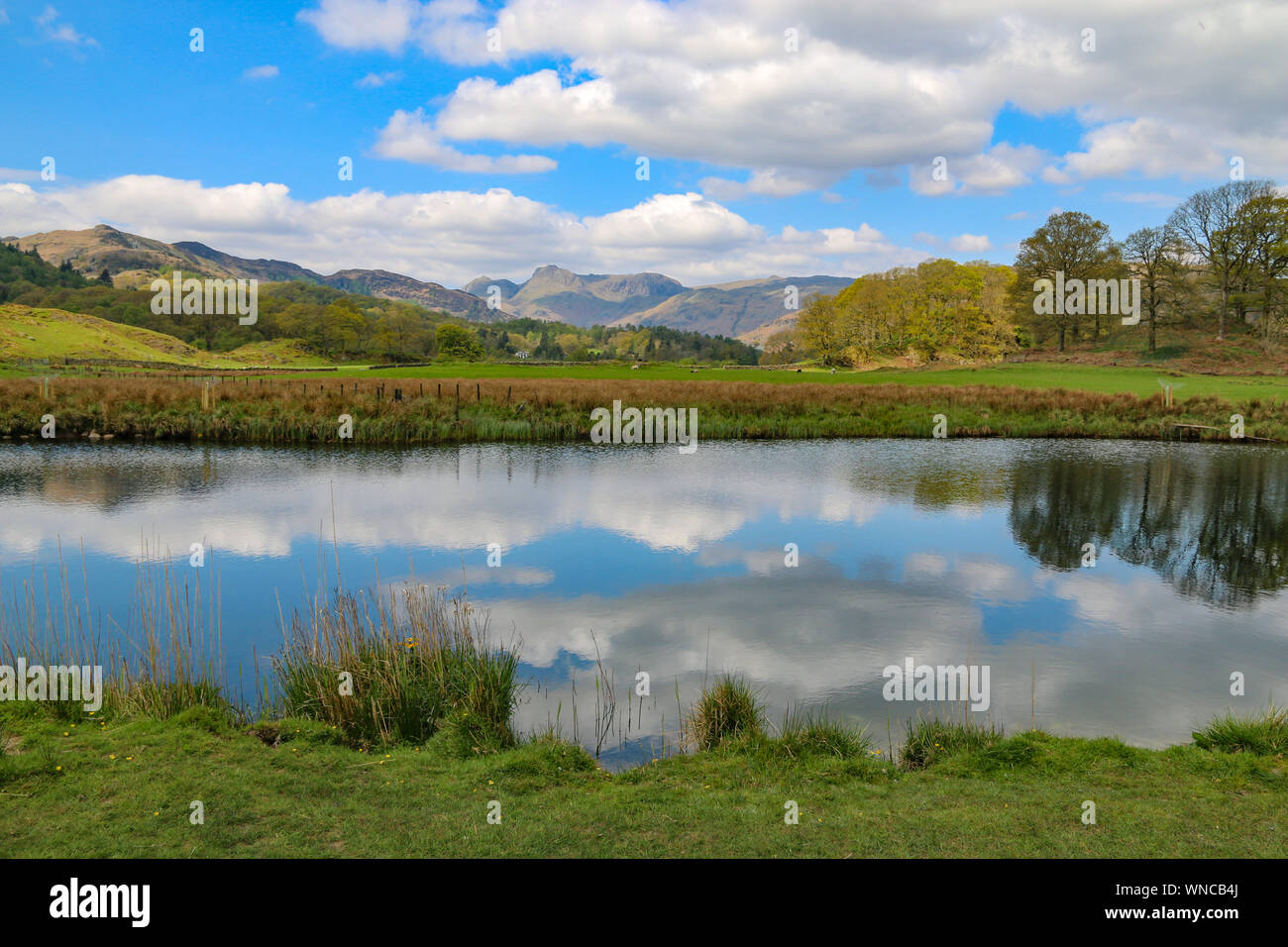 Stunning view of the mountainsm at Langdale Pikes, over Elter Water, near Ambleside, Cumbria, United Kingdom Stock Photo